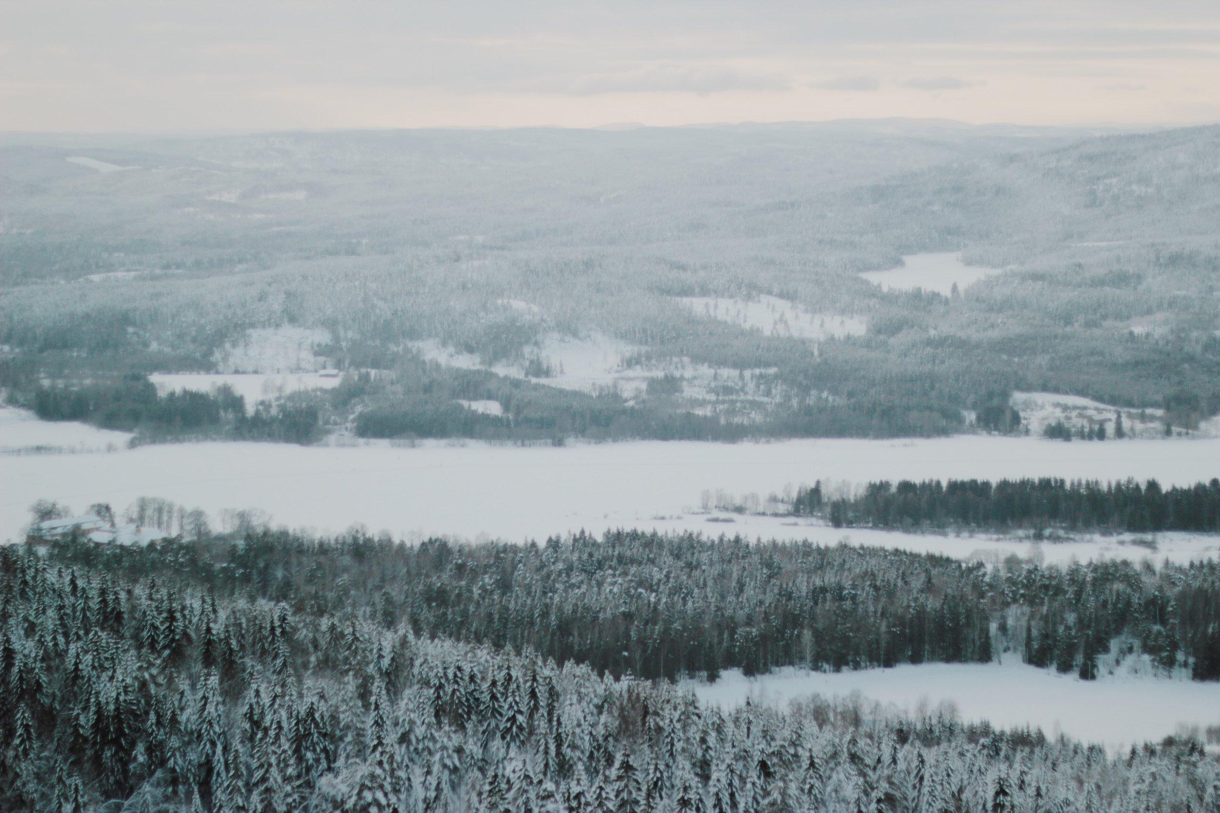 Winter wonderland, Oslo, Norway, Snow, Landscape