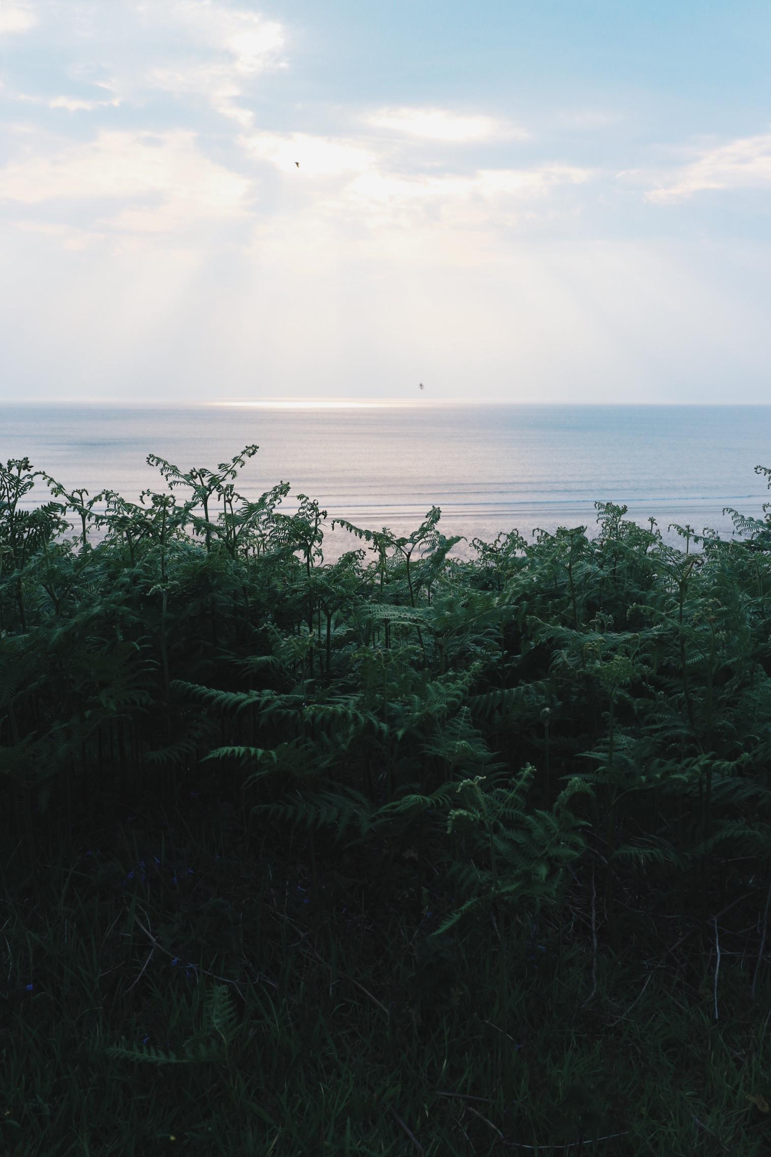 Sunset, The Gower Peninsula, Welsh beach