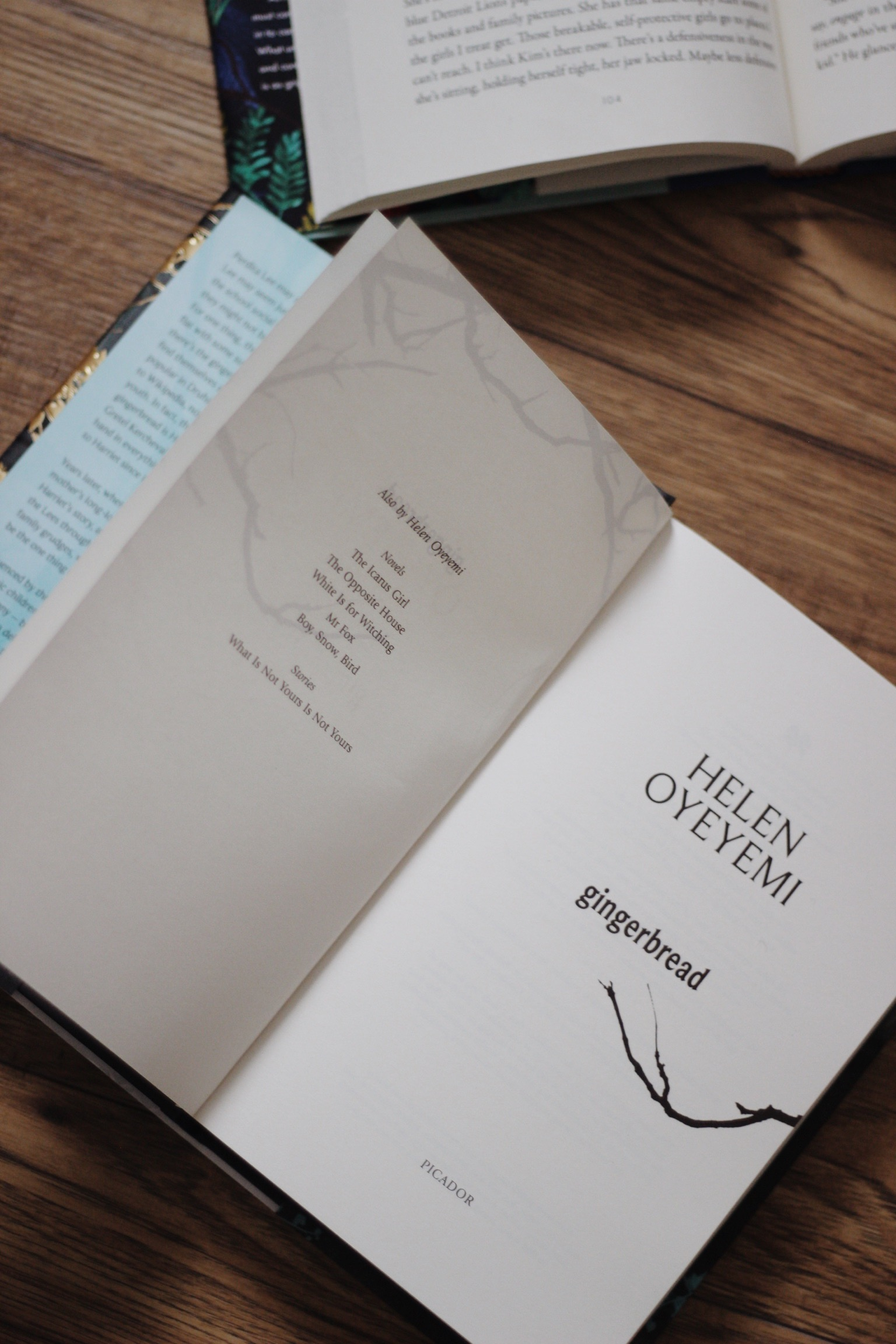 Gingerbread book | Open book