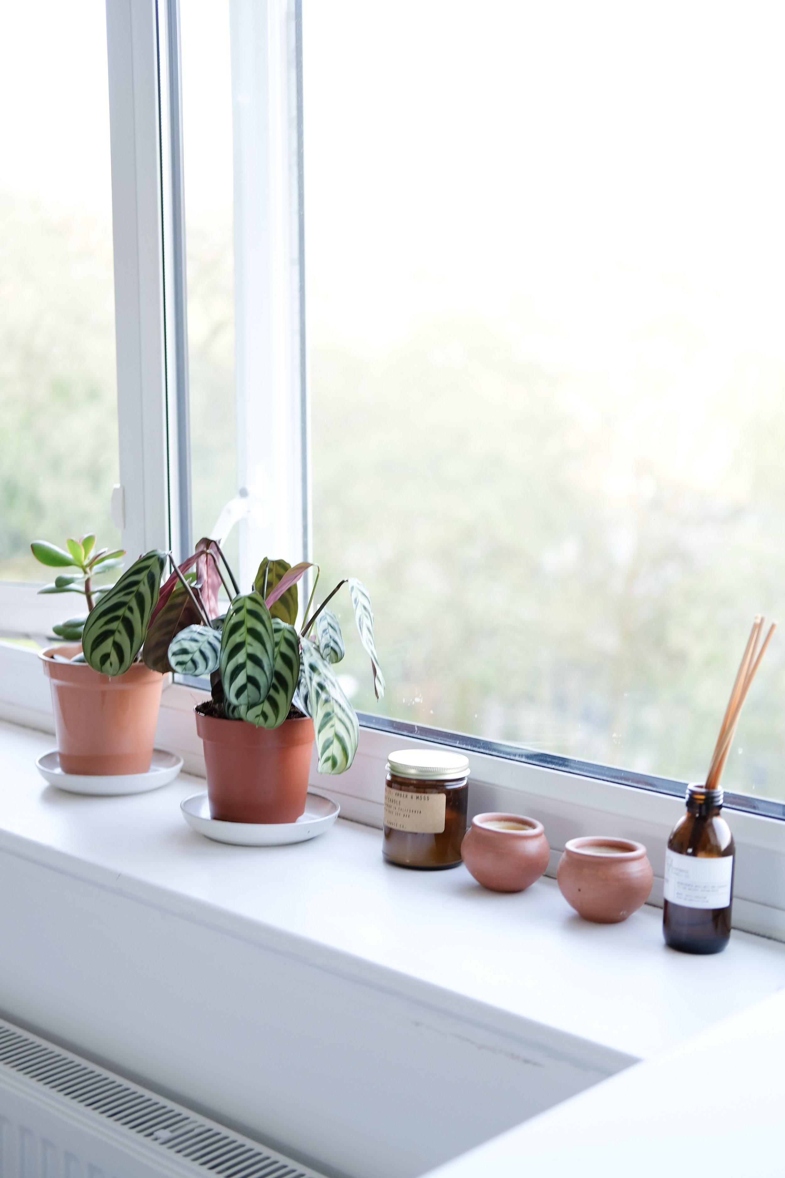Slow and simple bedroom | plants on windowsill