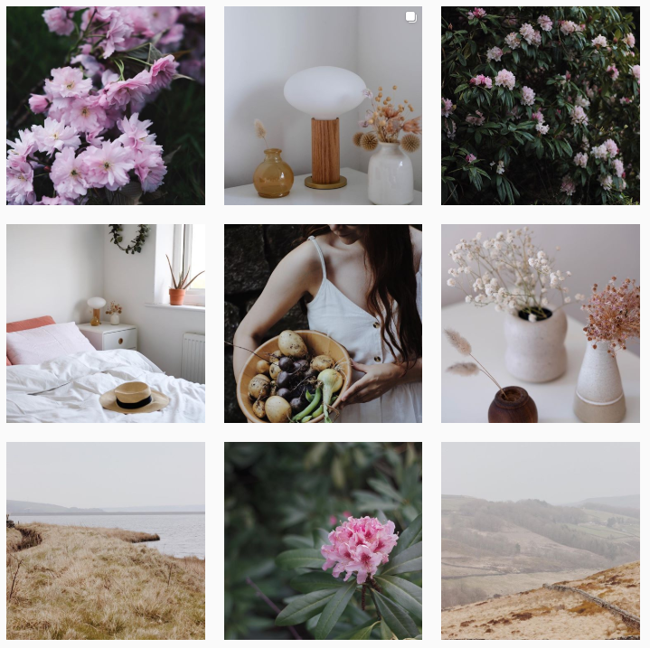 Field + Nest Instagram