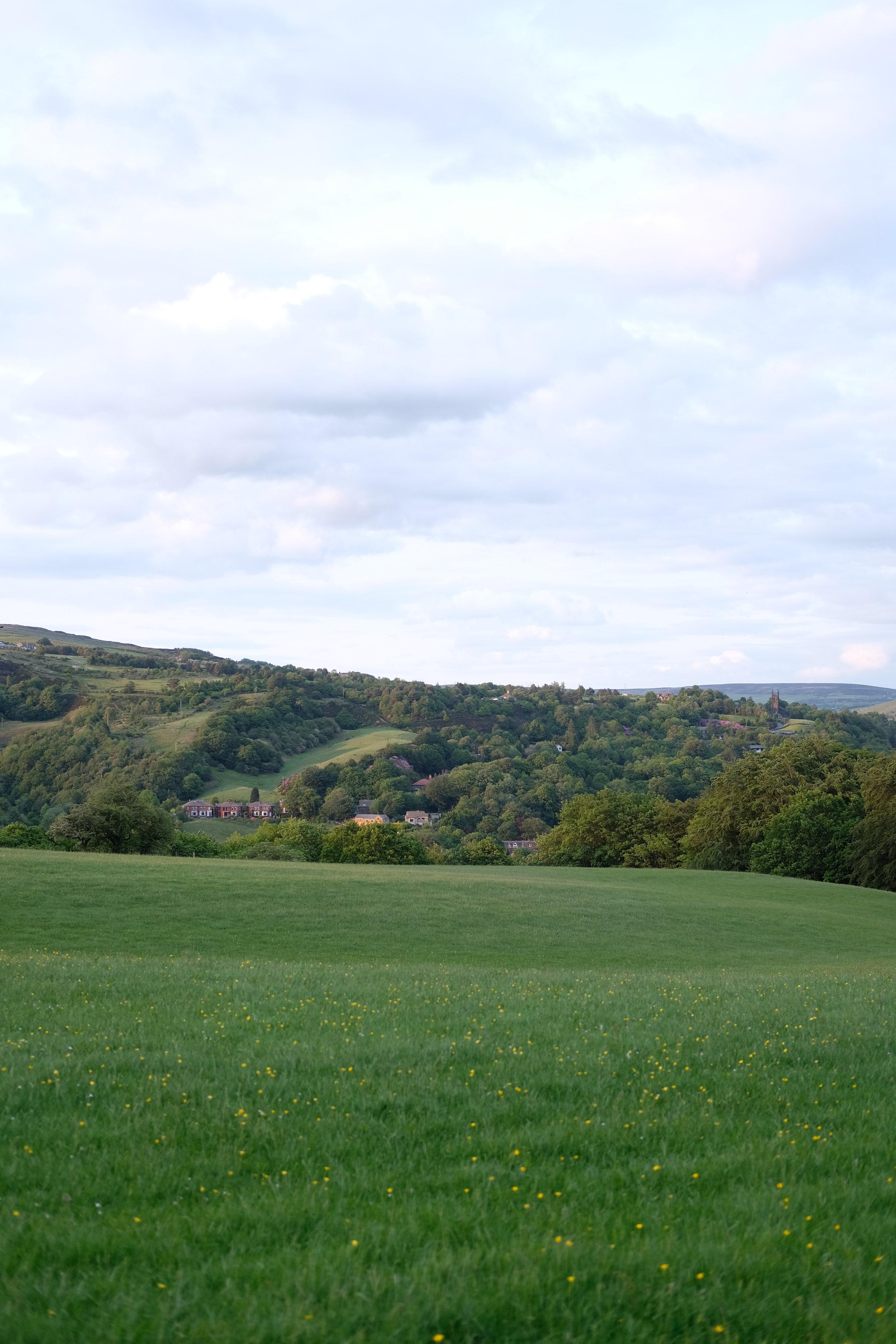 Countryside landscape | Field + Nest