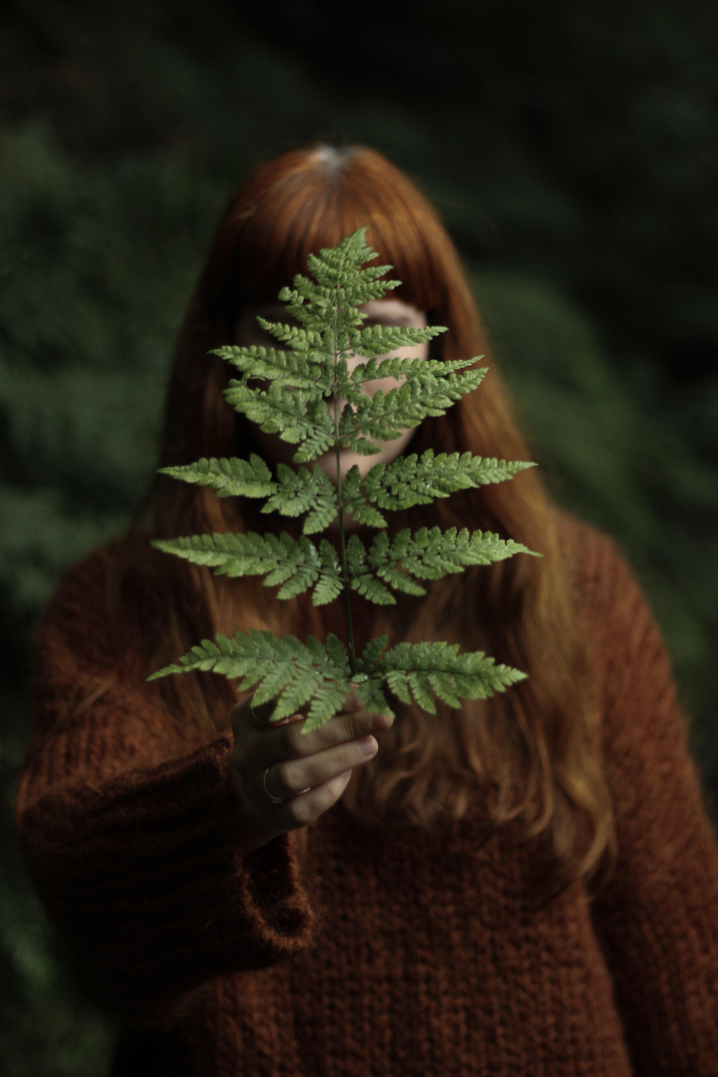 Girl holding fern | Field + Nest