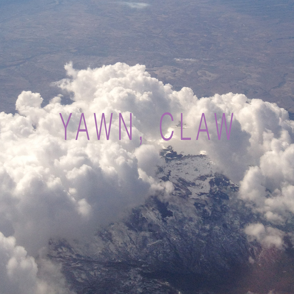 State Bird - Yawn, Claw