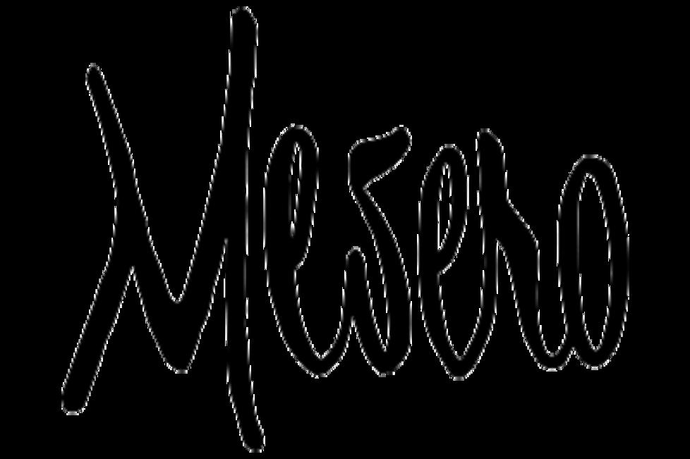 Mesero Logo.png
