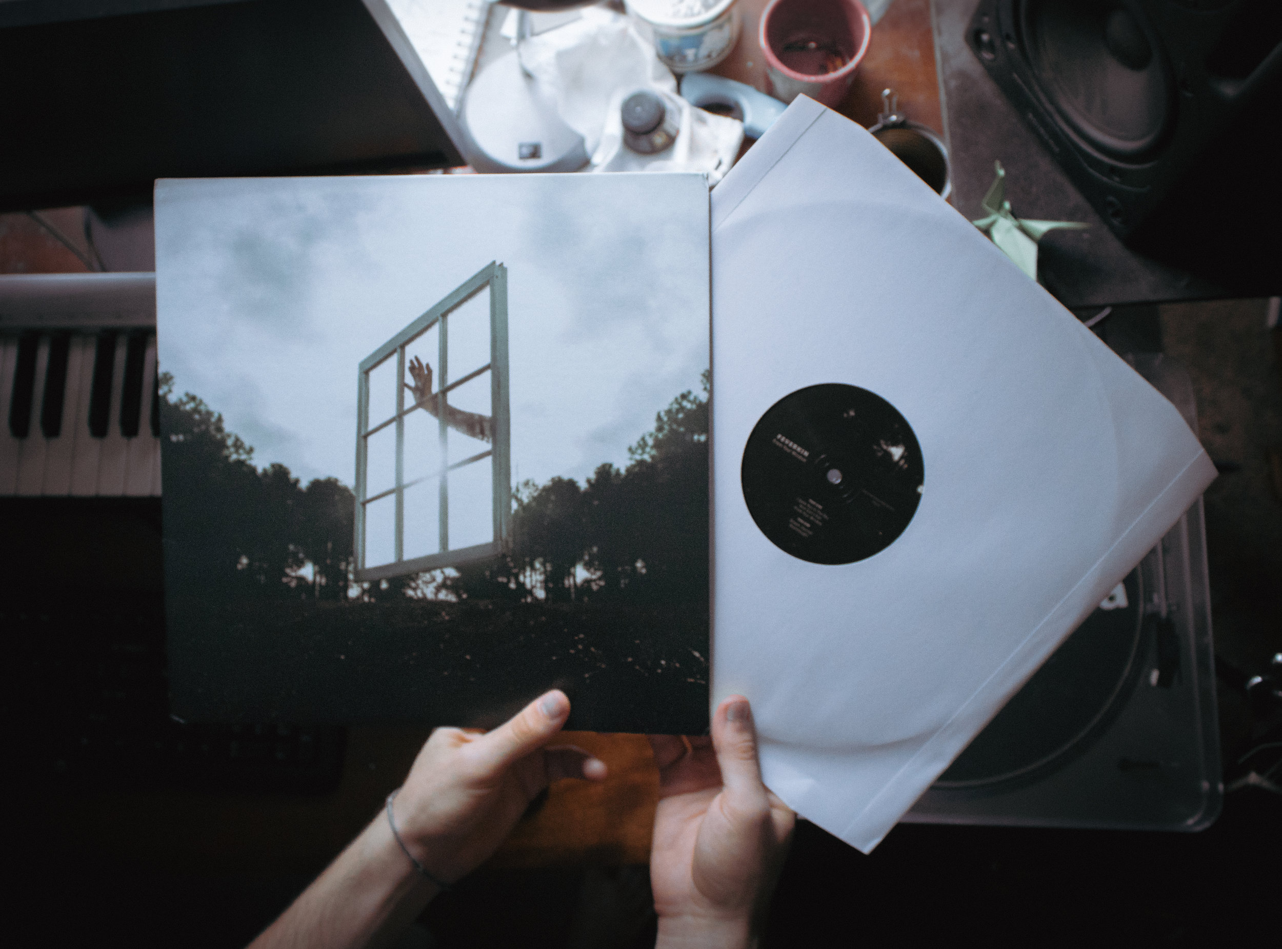 Vinyl in my own hands.jpg