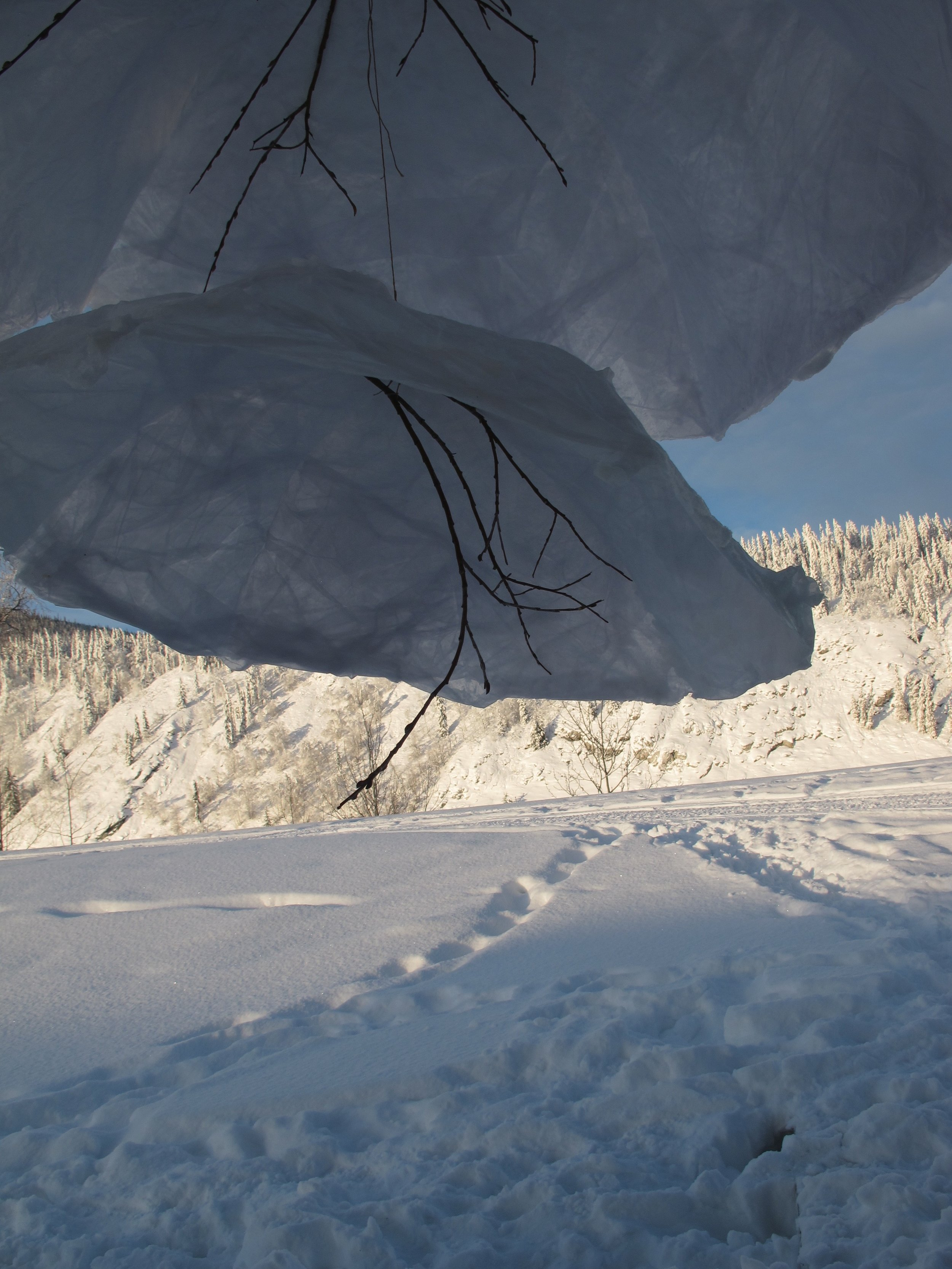 The snowy banks of the Yukon River, Dawson City, Yukon