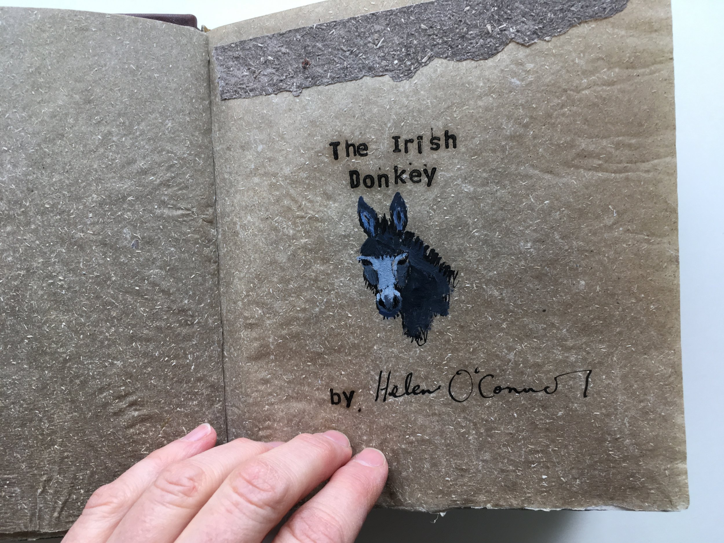 The book is inspired by stories from my parents' childhood in Ireland as well as my experiences there.