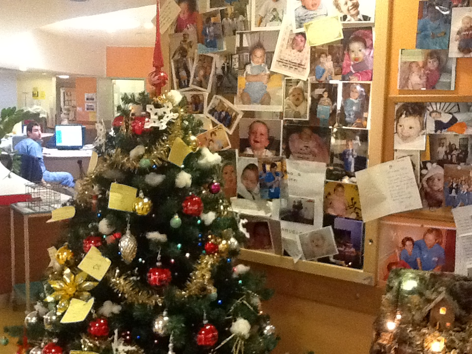 Meyer Hospital at Christmas
