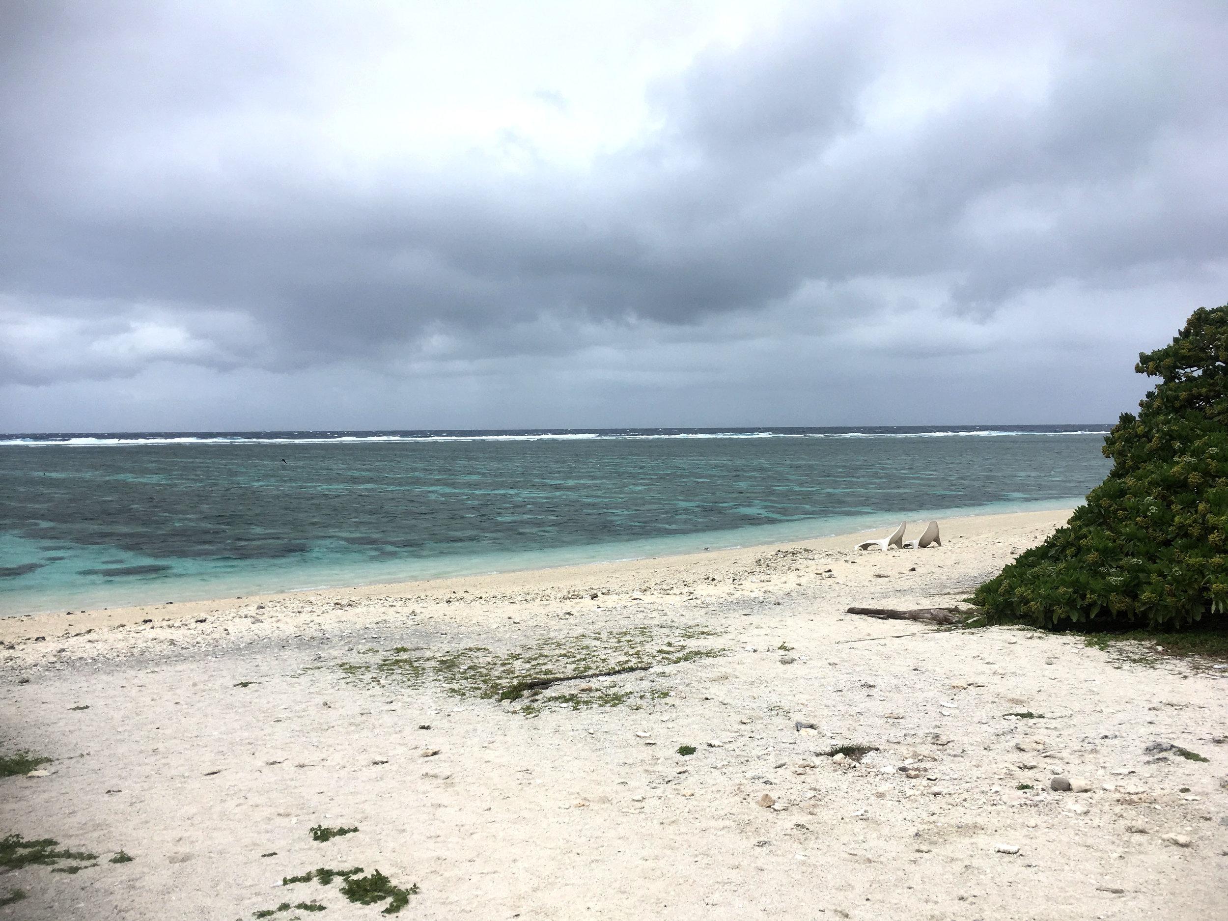 KM_Lady Elliot Island 3.jpg