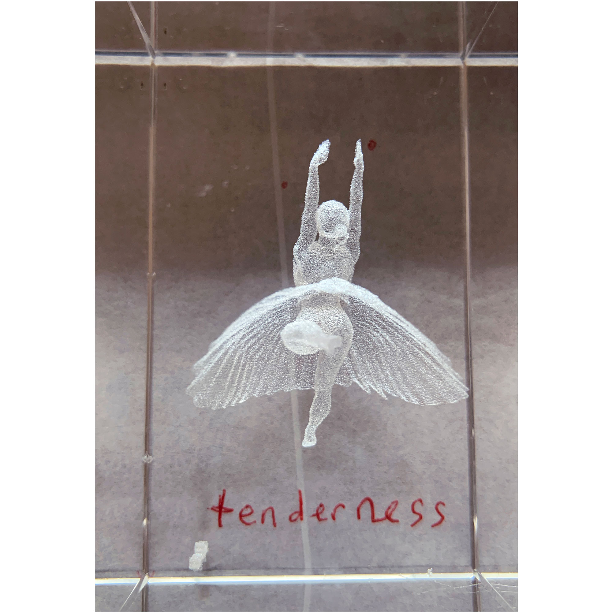 tenderness-ballerina-21x21-web.jpg