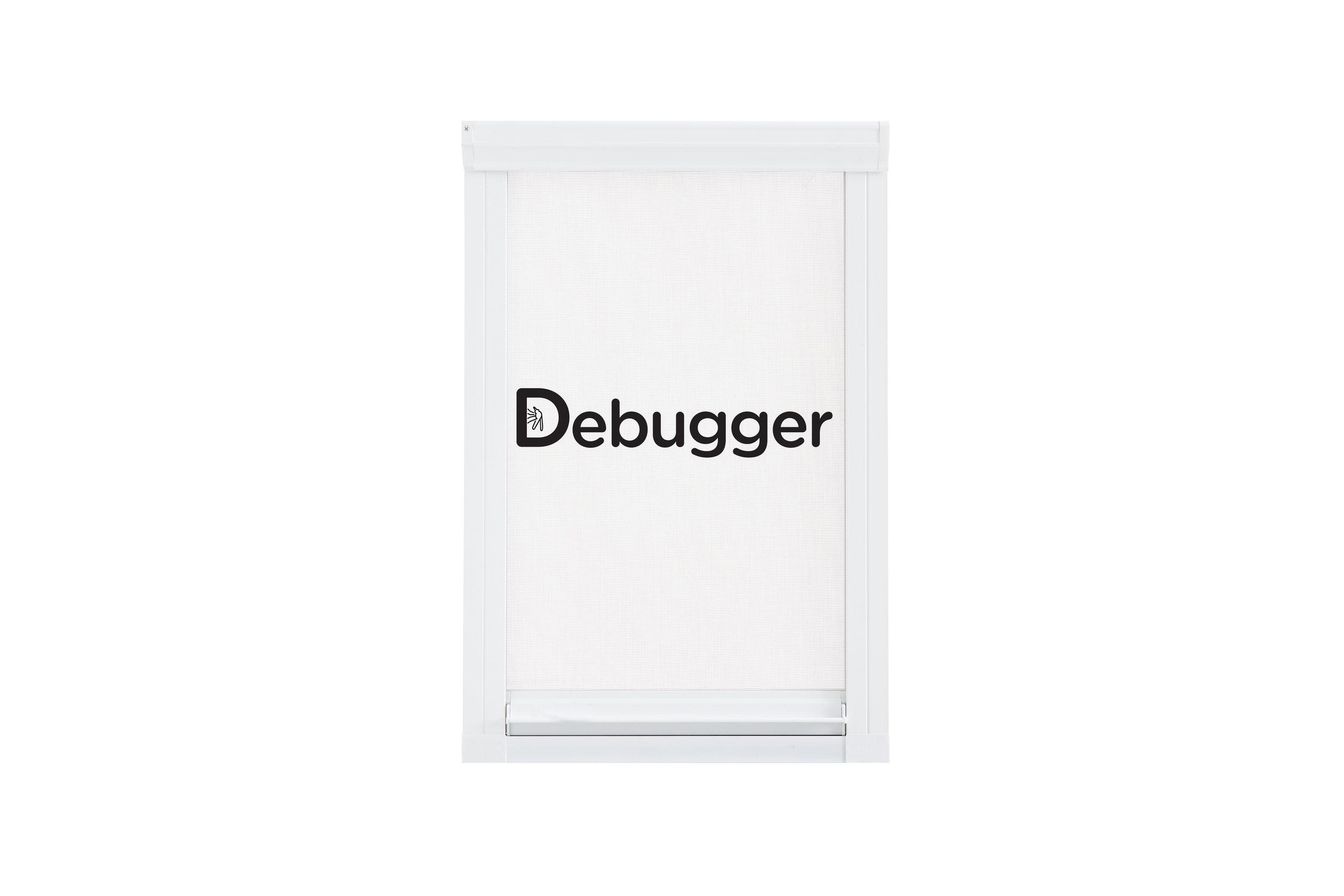 Debugger Intro.jpg