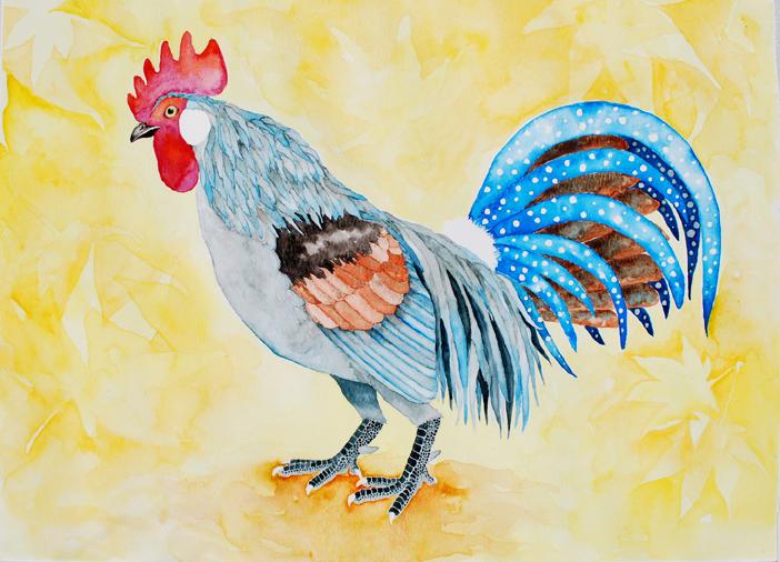 Cockerel, Watercolor on Paper