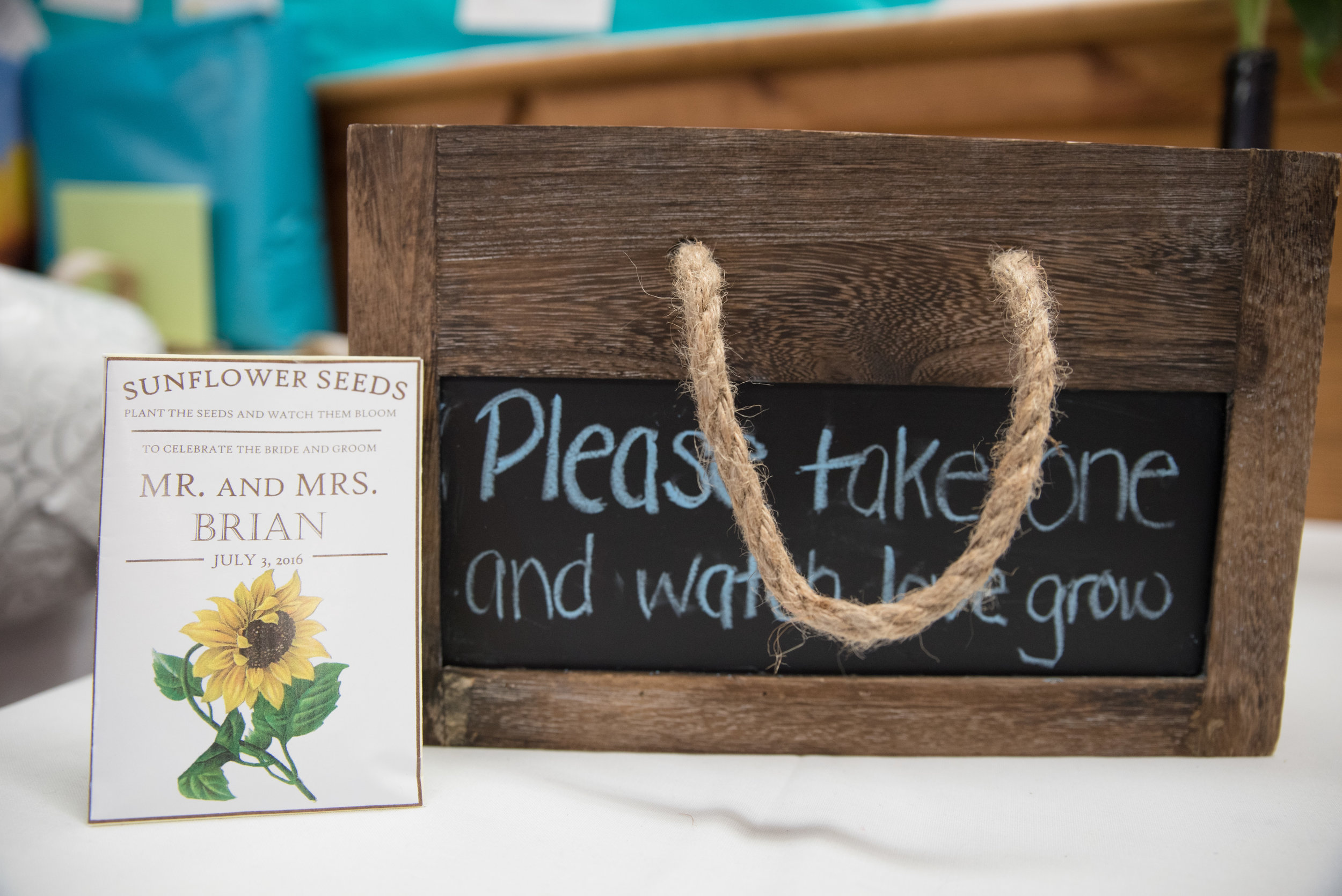 Lisa and Nate, weddings, Fall, Autumn, marriage, nature, October, Brian, Latham, wedding photography, rustic, woodsy, woods, DIY, Connecticut, Massachusetts, lake, sunflower, pond, yellow, simple, gorgeous, blue, reception
