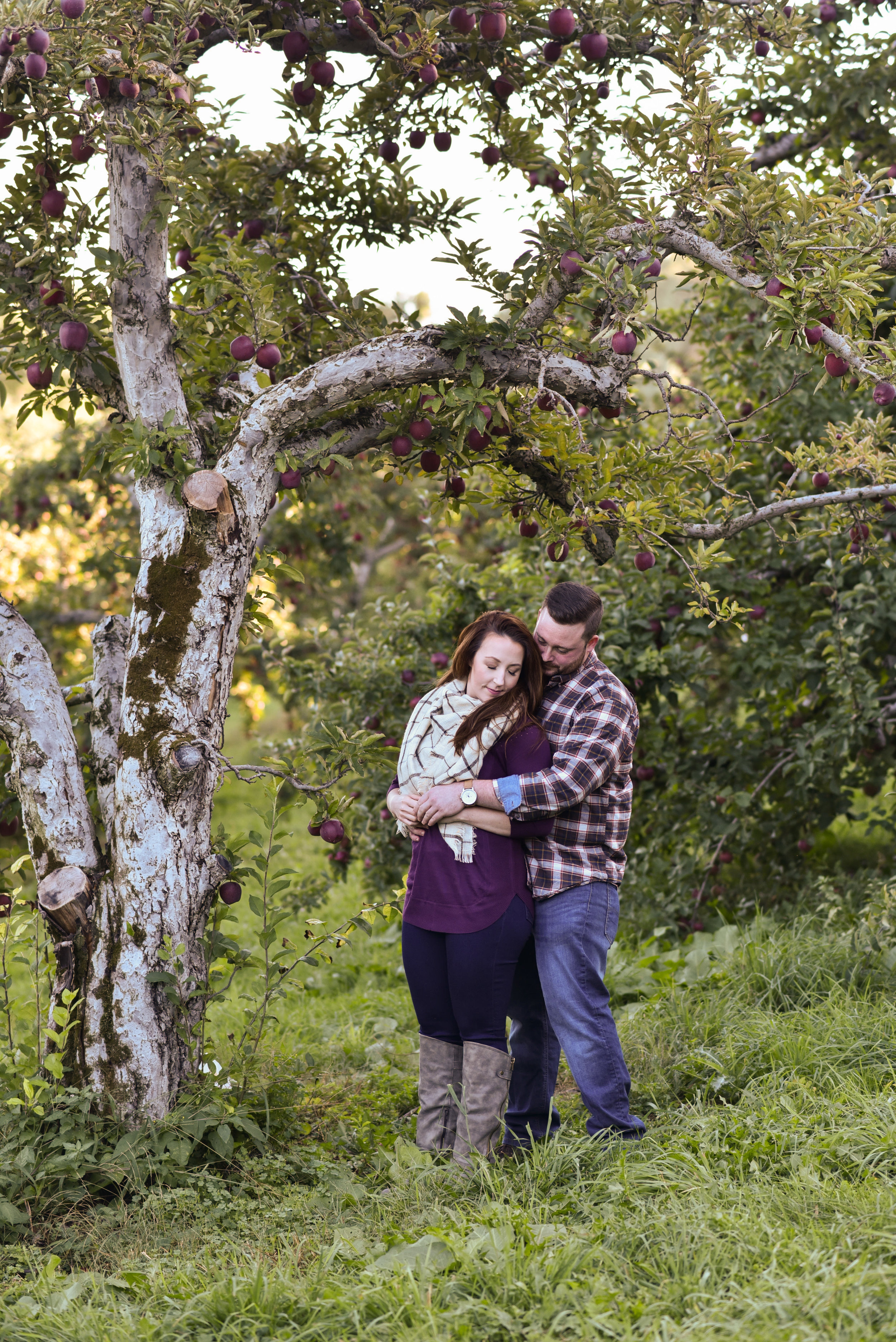 Honey Pot Hill Orchard engagement photos in Stow, MA photographed by Kara Emiy Krantz Photography
