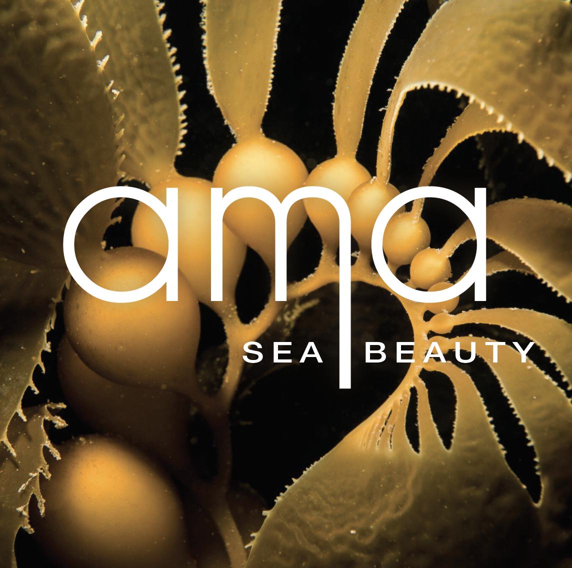 Kelp Logo.png