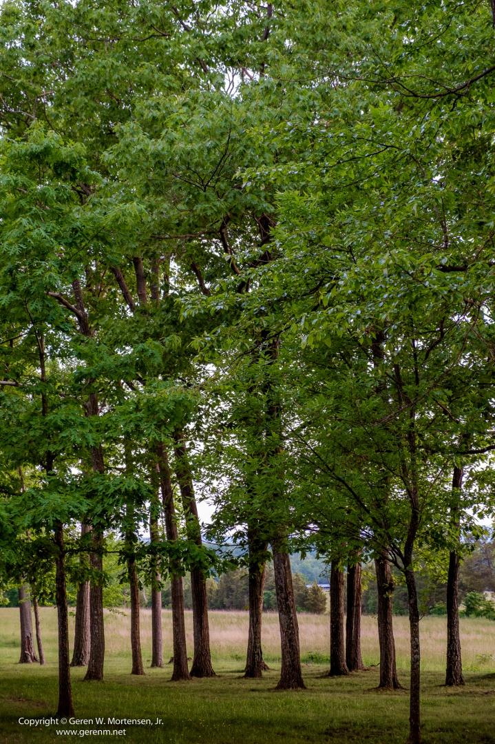Gettysburg_Clean_May-31-2014_10.jpg