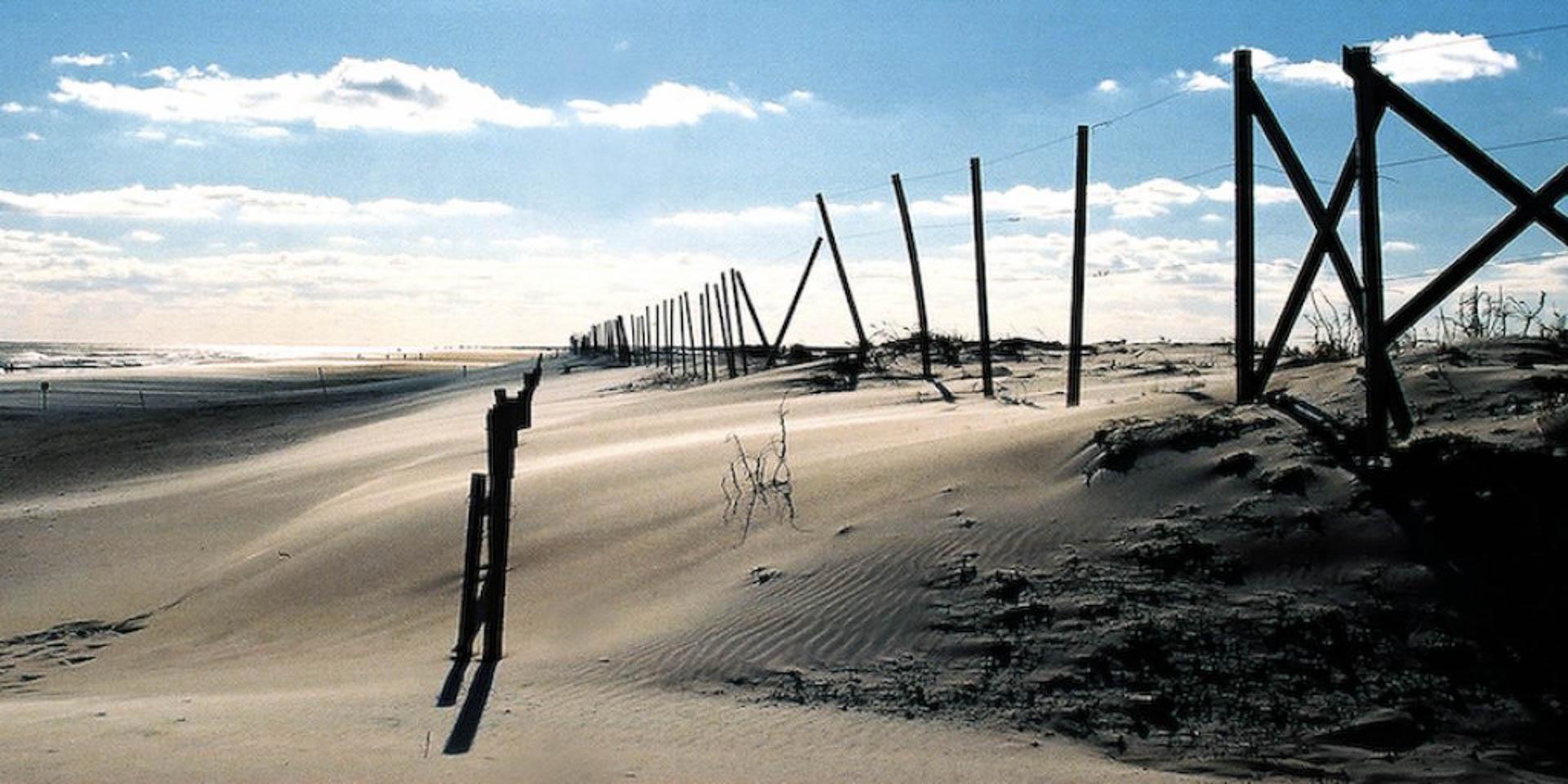 assateague-dune-2.jpg