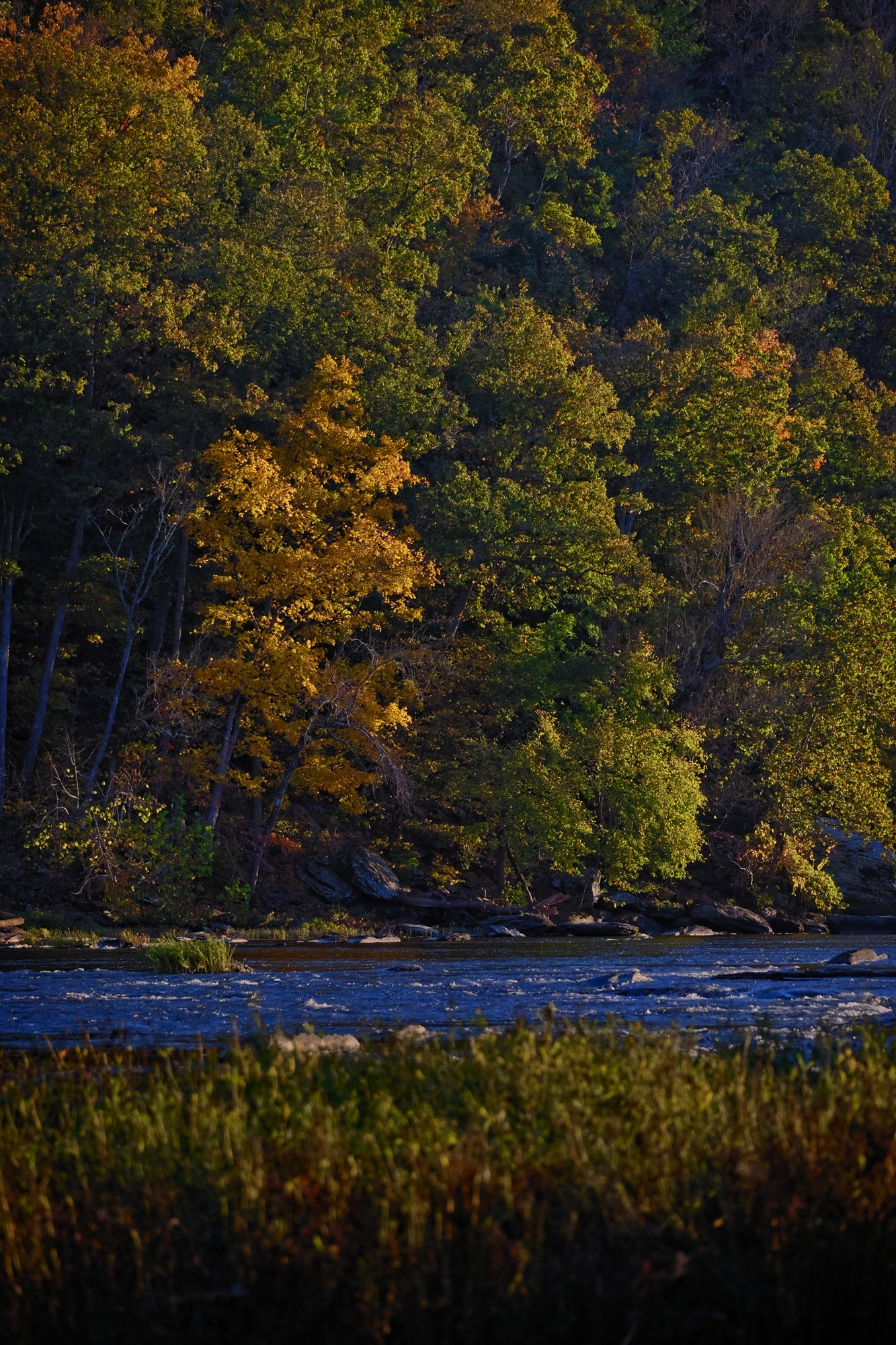 HarpersFerry-161023-2 copy.jpg