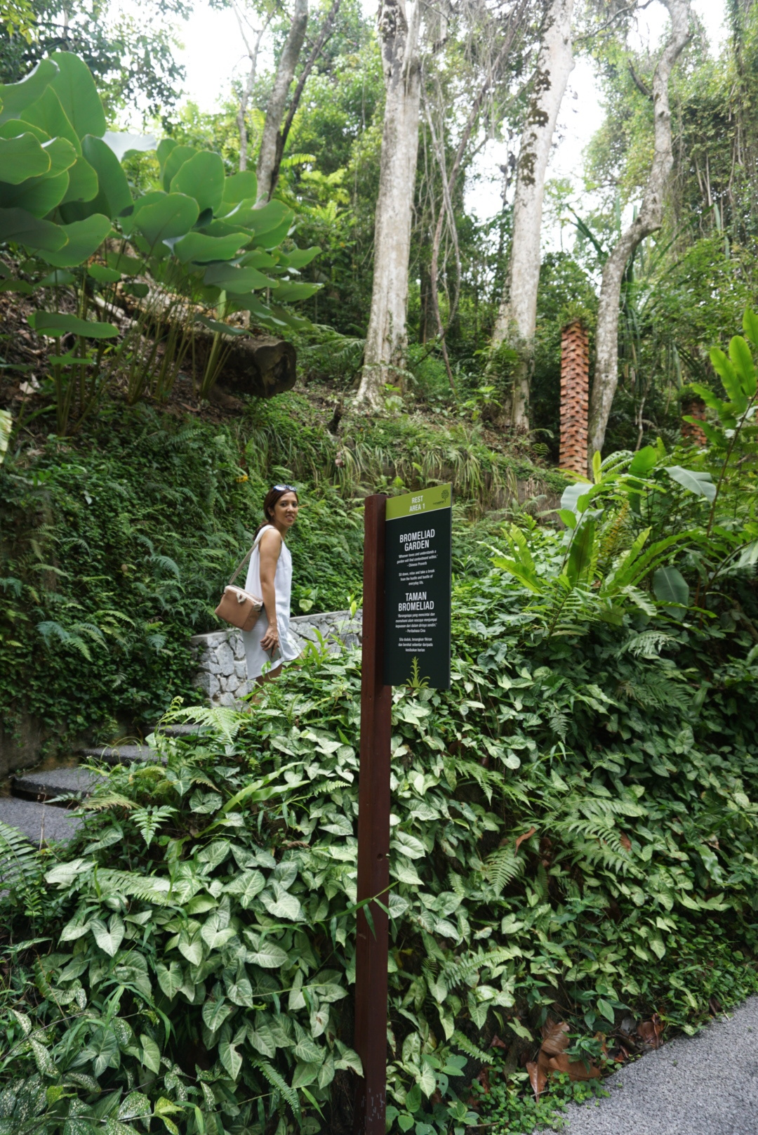 Batik&Bubbles_thehabitat_climb