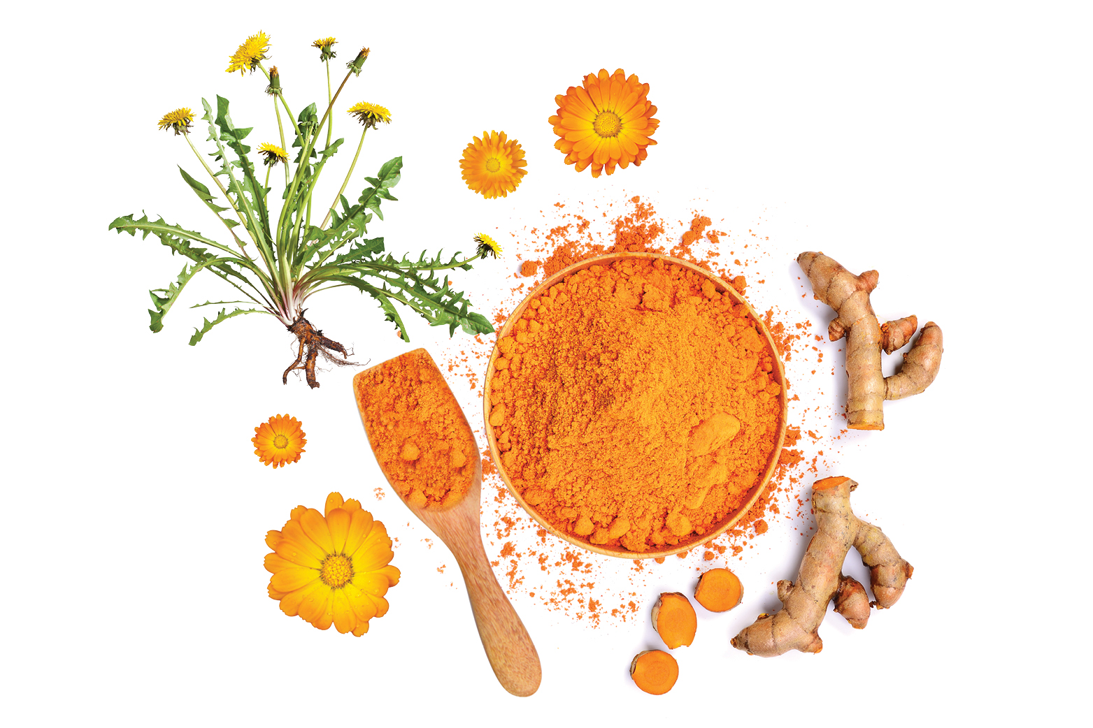 An orange powder in a bowl and wooden spoon arranged out on a white background surrounded by ginger and flowers