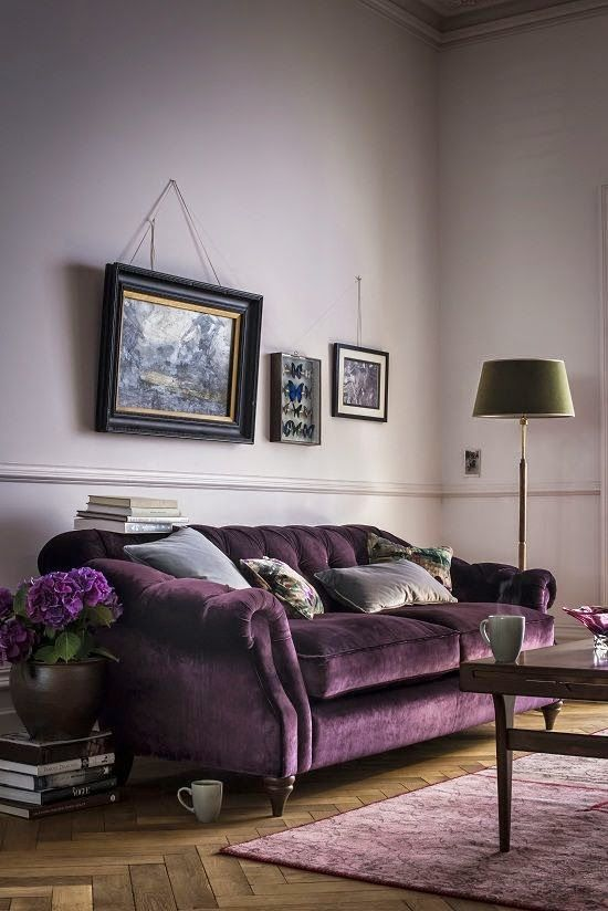 Purple room with purple sofa