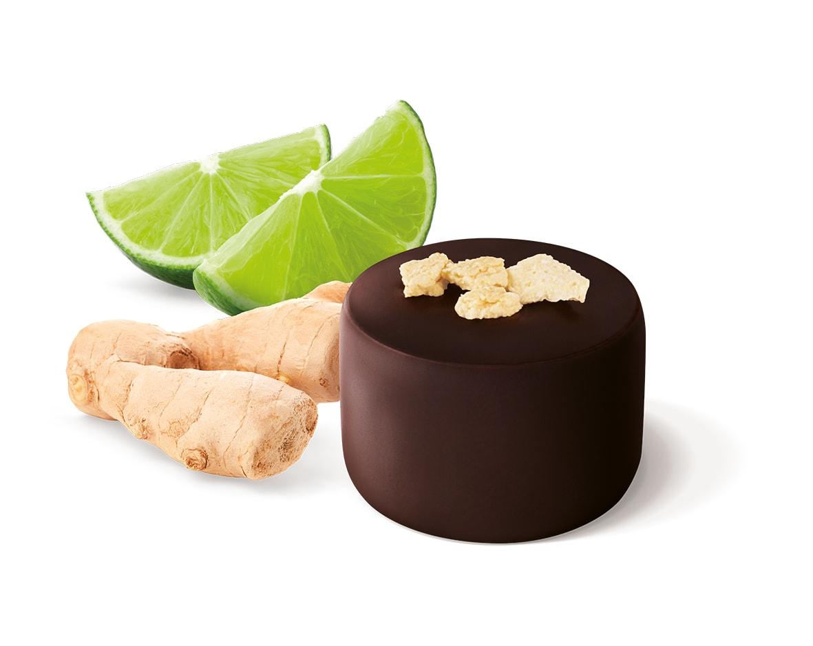 Guylian The Masters Selection Chocolates