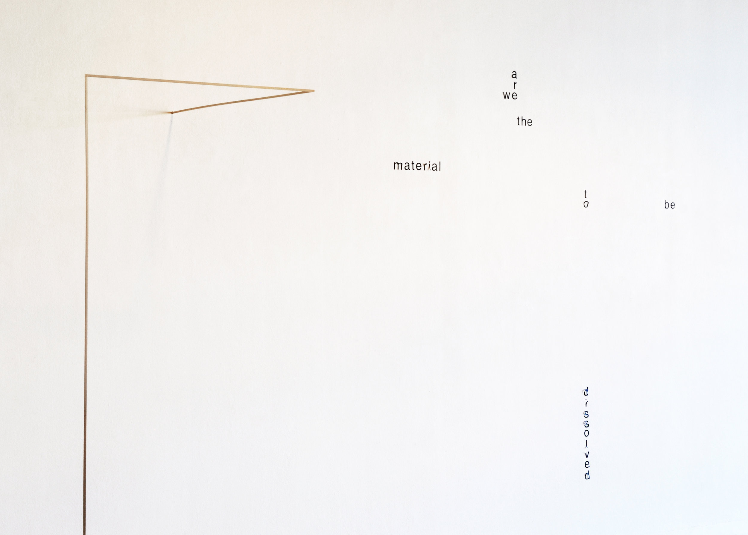 We Are The Material To Be Dissolved, 2015