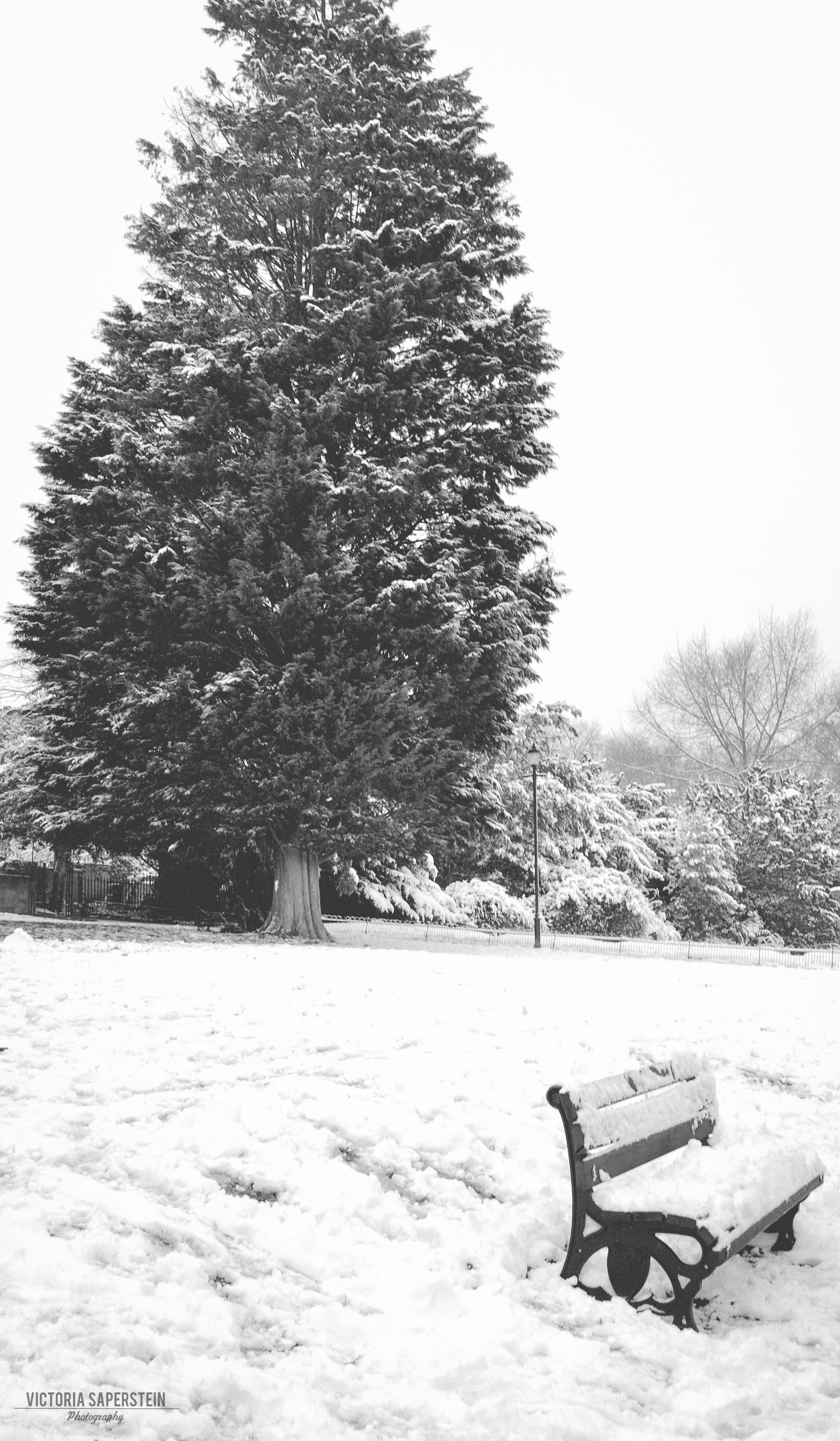 Bath snow edit.jpg