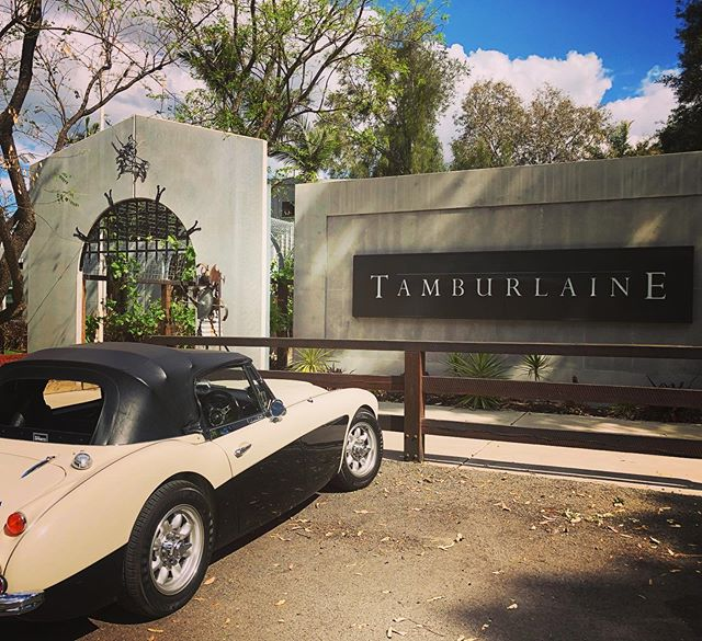 Wine country done right. 😮😍🚘🍷🍷@tamburlaineorganicwines   #huntervalley #tamburlaineorganicwines #winelovers #winecountry #winetravel #convertible #oldtimer #racecar #daytripper #winetasting #winemediaconference #wmc19 #organicwinery 