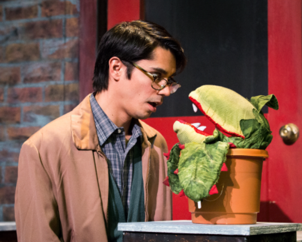 Little Shop of Horrors , March 2015