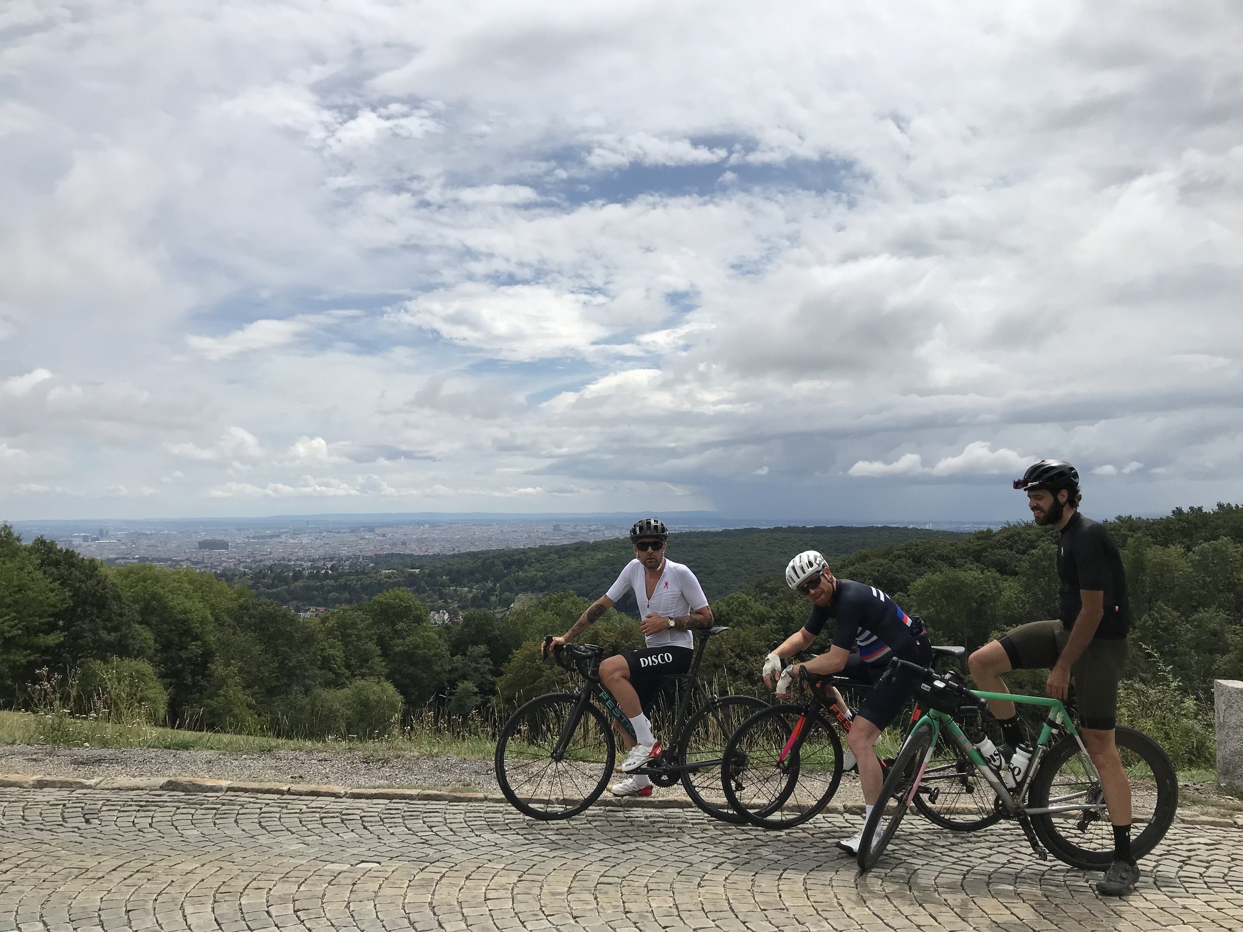 Stunning views of Vienna await those who make it to the top of the climbs in the Vienna Woods