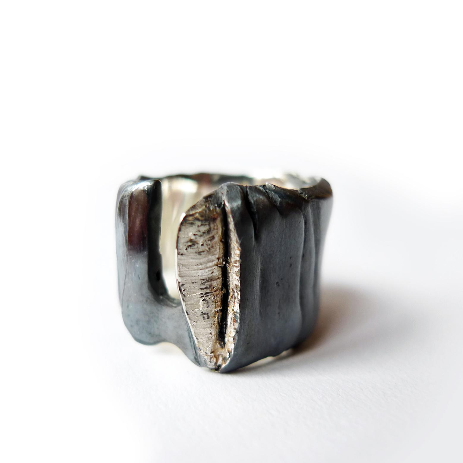 Infinite ring I - Marion Lebouteiller.jpg