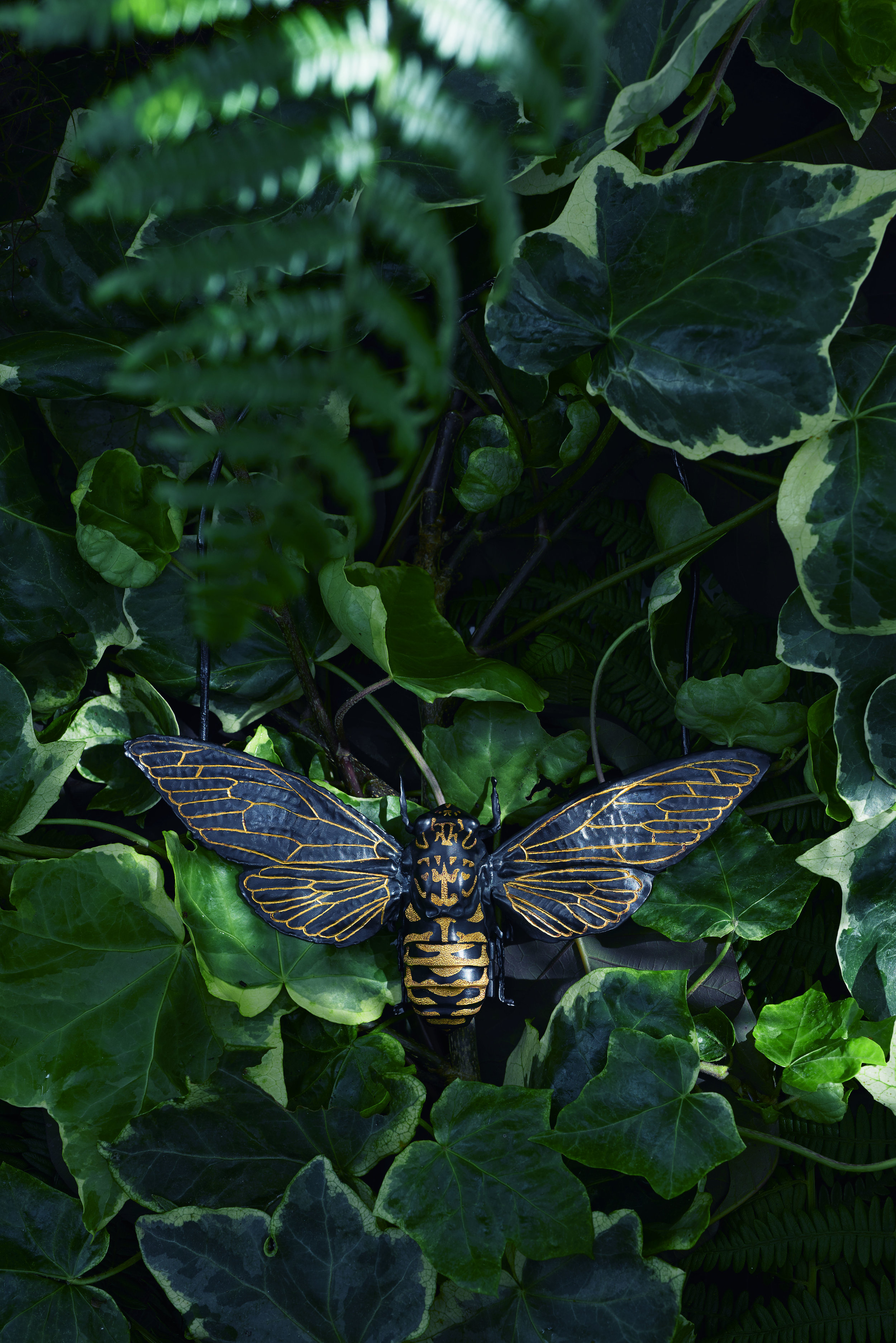 Cicada Neckpiece (black ruthenium & gold).jpg