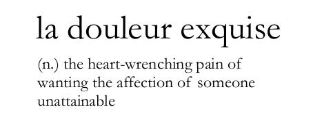la douleur exquise.png