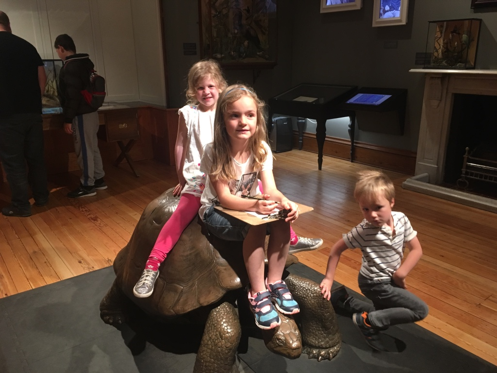 Also a giant tortoise...