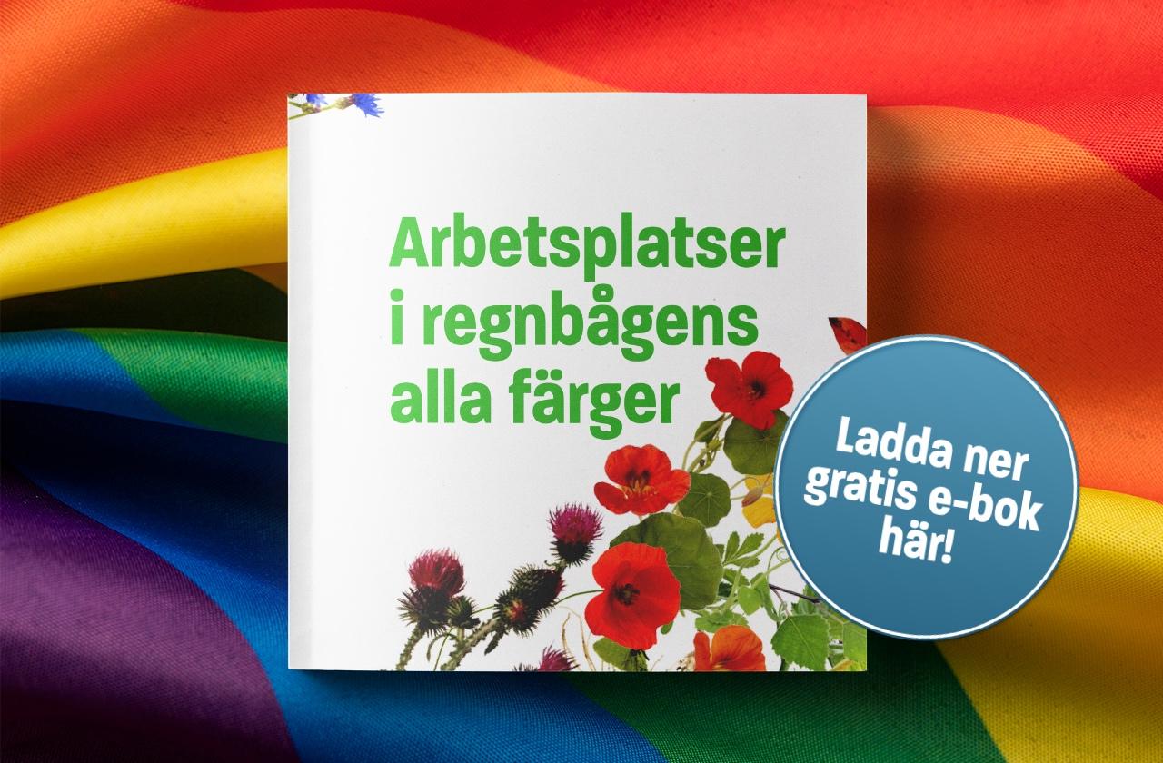 Unionen  Inför EuroPride 2018 fick jag i uppdrag av Unionen att skriva denna bok. Innehåller konkreta tips från olika arbetsgivare om hur de arbetar för en inkluderande arbetsplats.