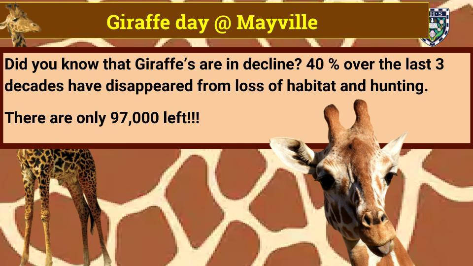 Giraffe day @ Mayville.jpg