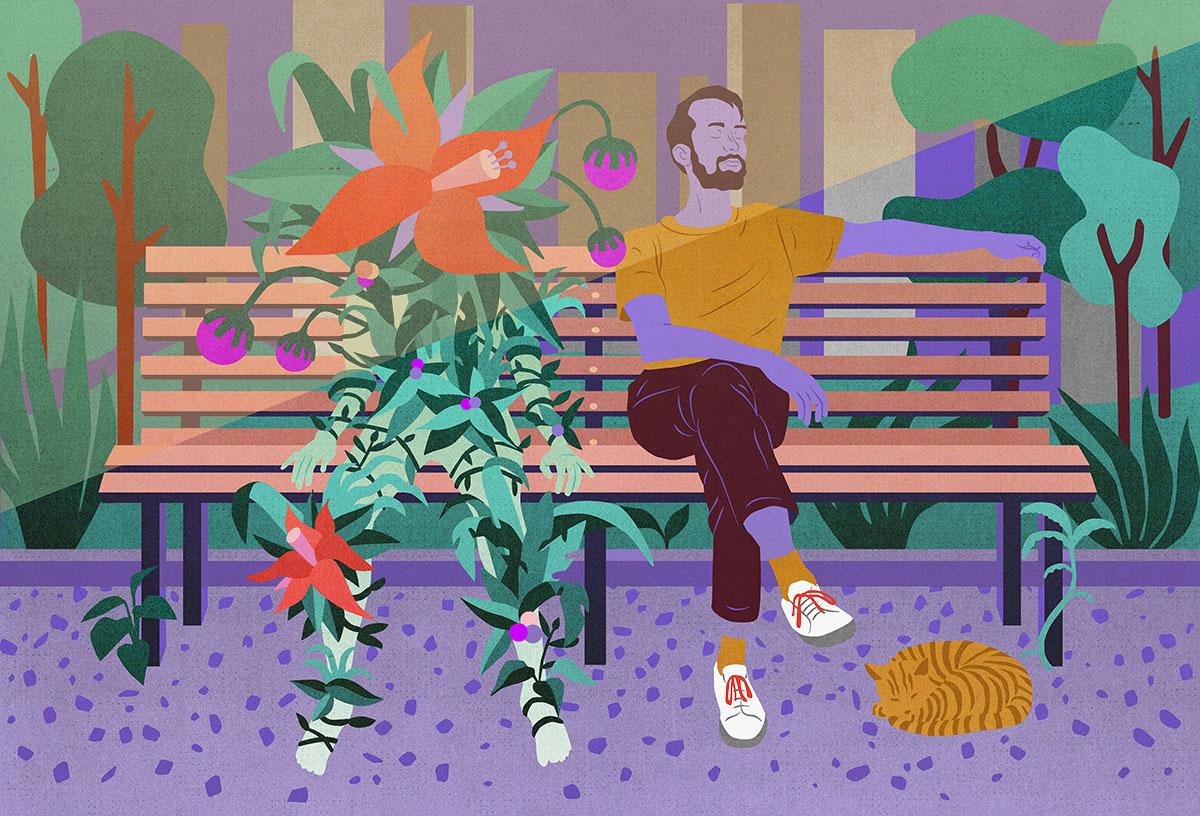 Letitgrow_plantsProductivity_3-1200.jpg