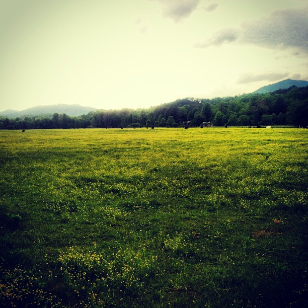 10 Places to Write: An Open Field