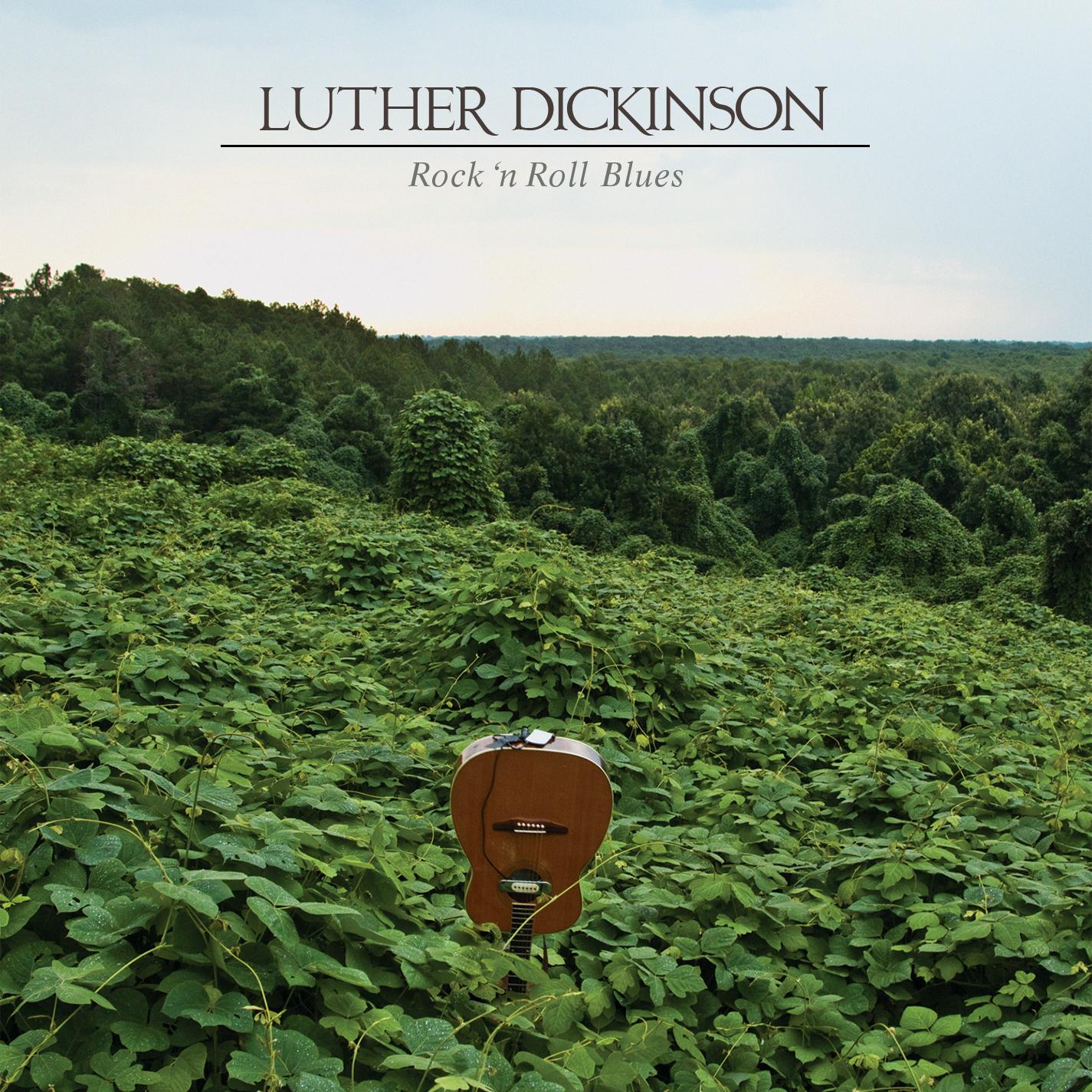 LutherDickinson-RnRBlues-ADA.jpg