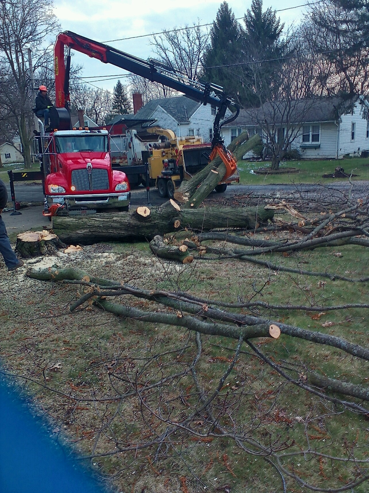 Dover, Ohio Stump Grinding and Tree Removal.