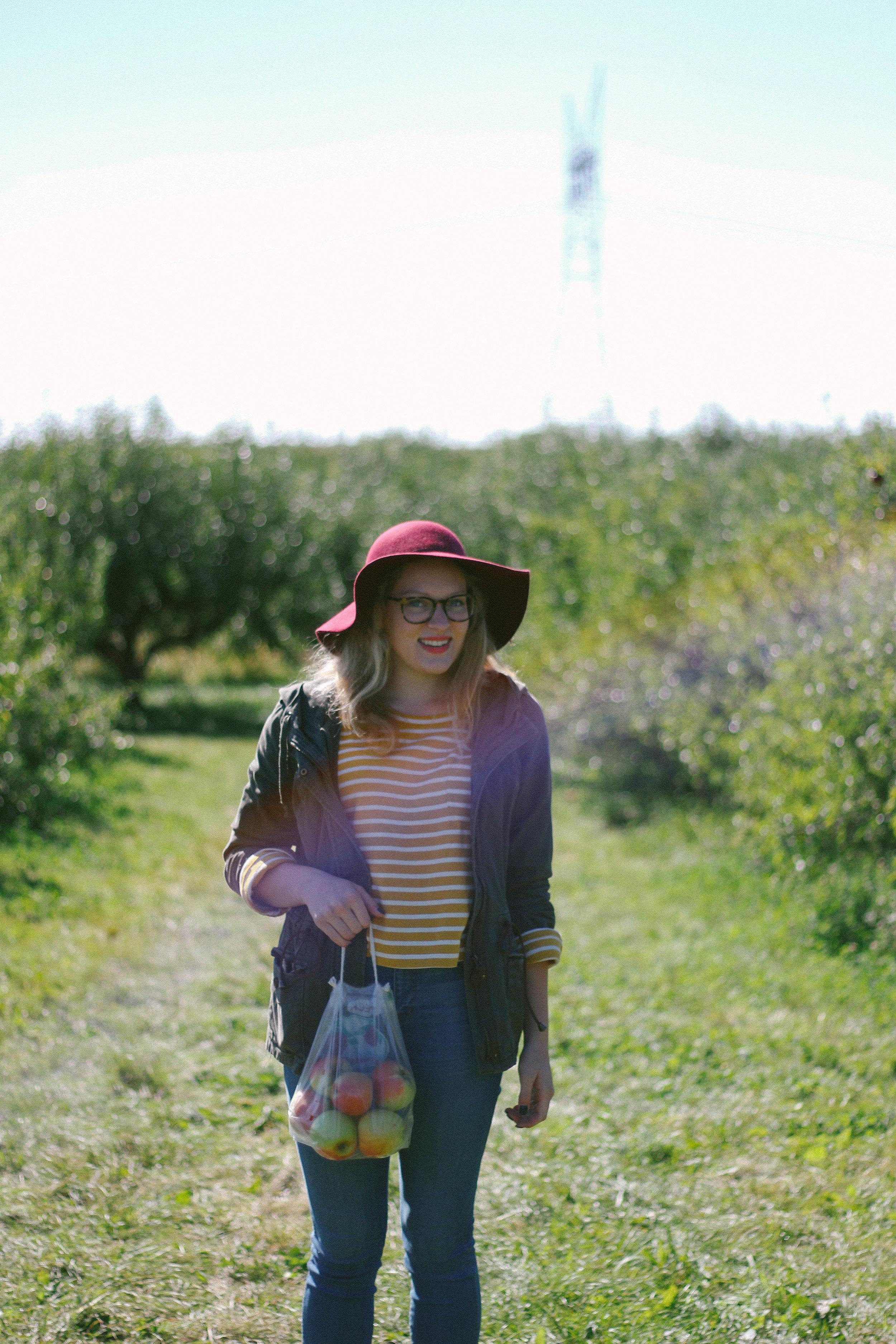 apple orchard 2016-22.jpg