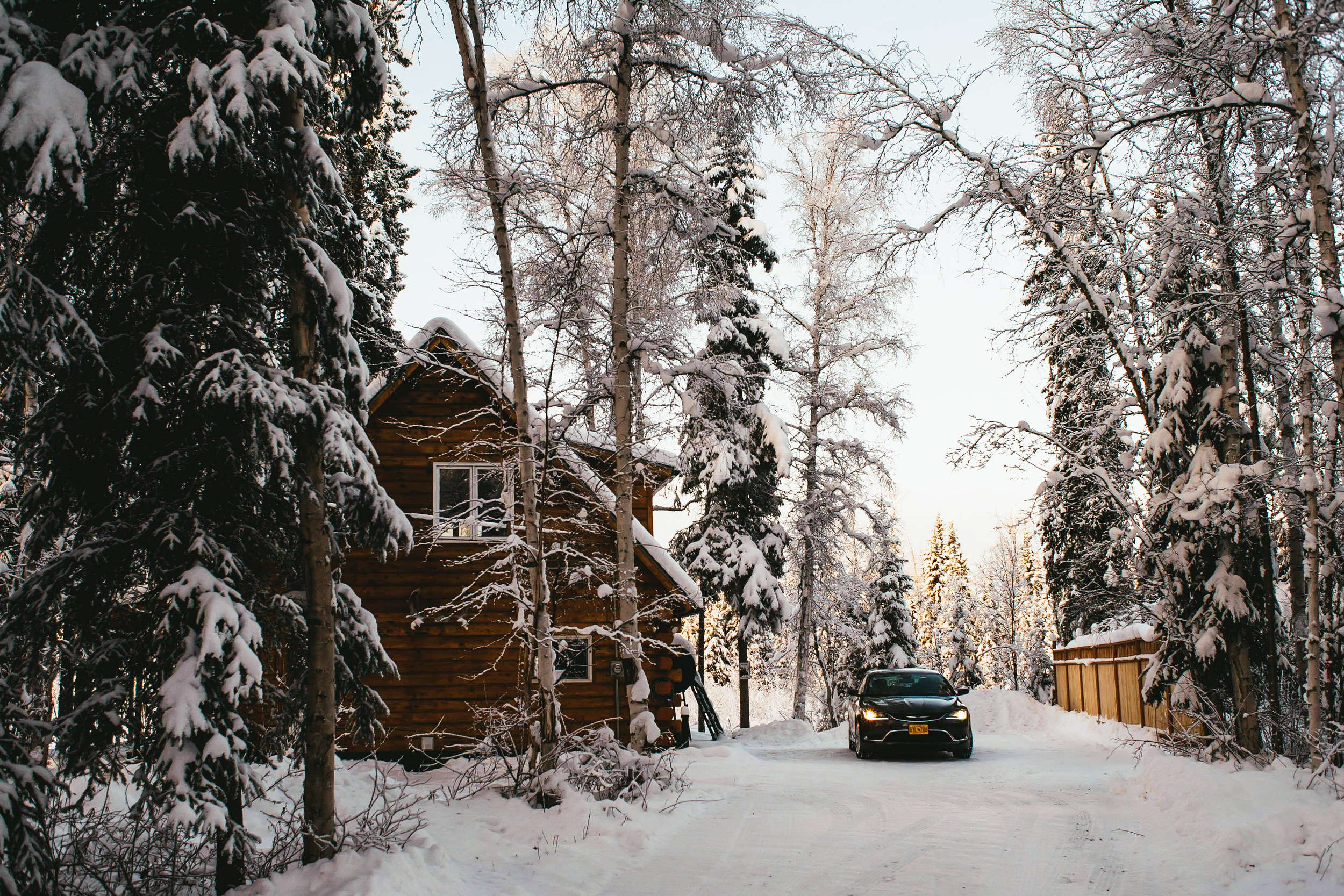 Driveway to Moose Walk Cabin.