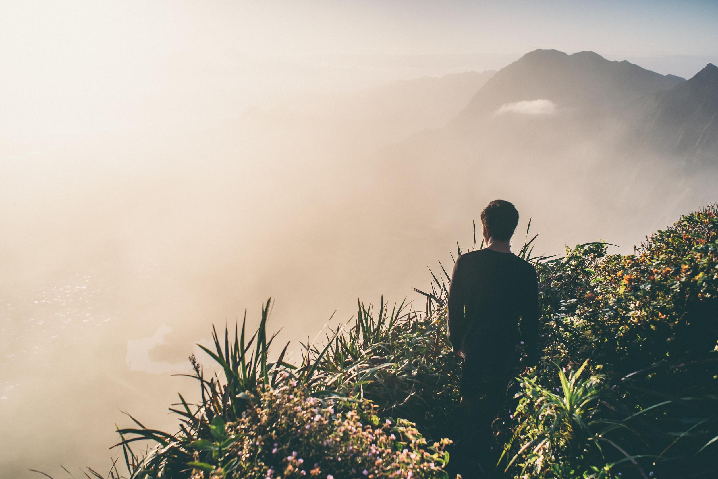 Rayce basking in the Hawaiian morning light.