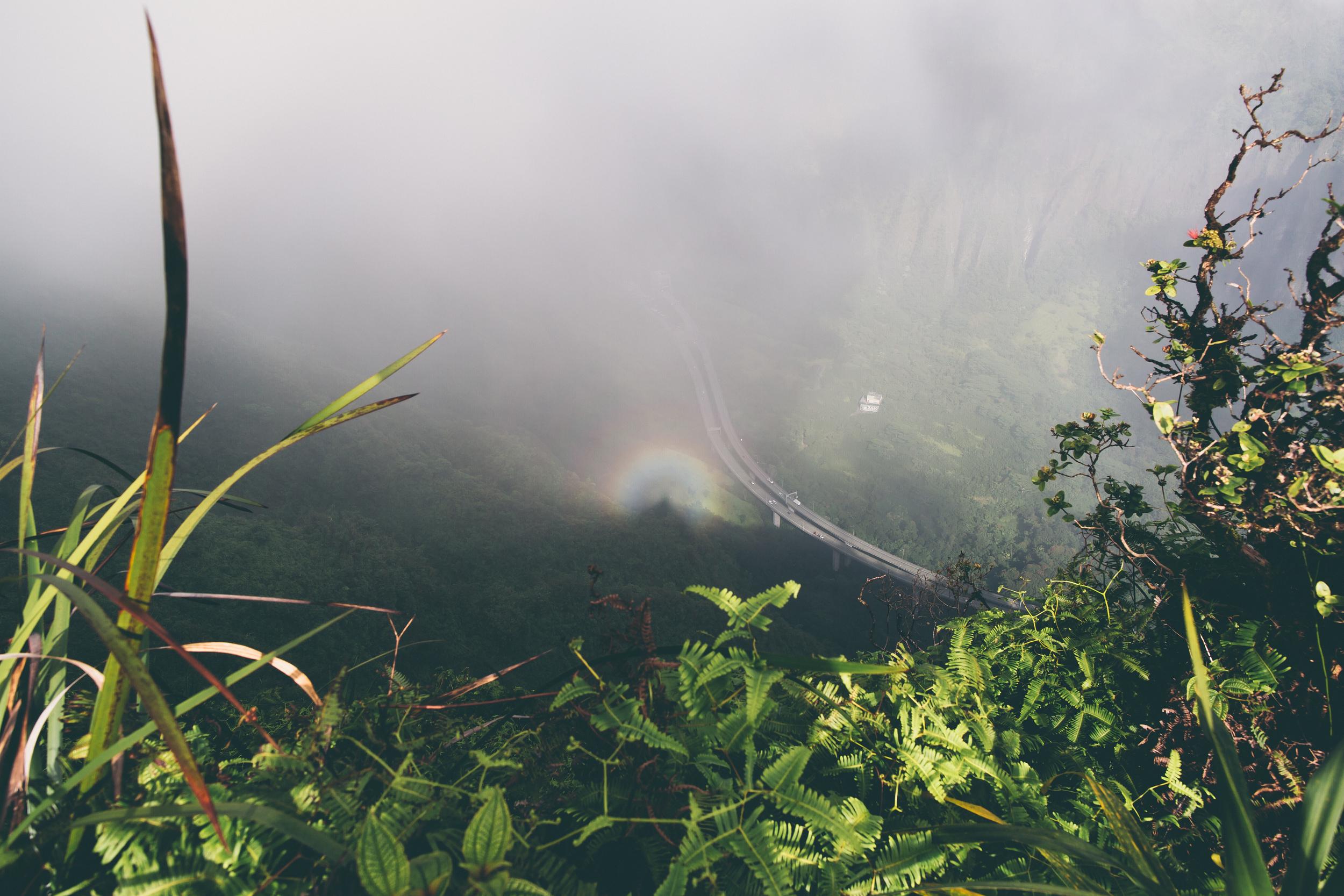 Rainbow halo!