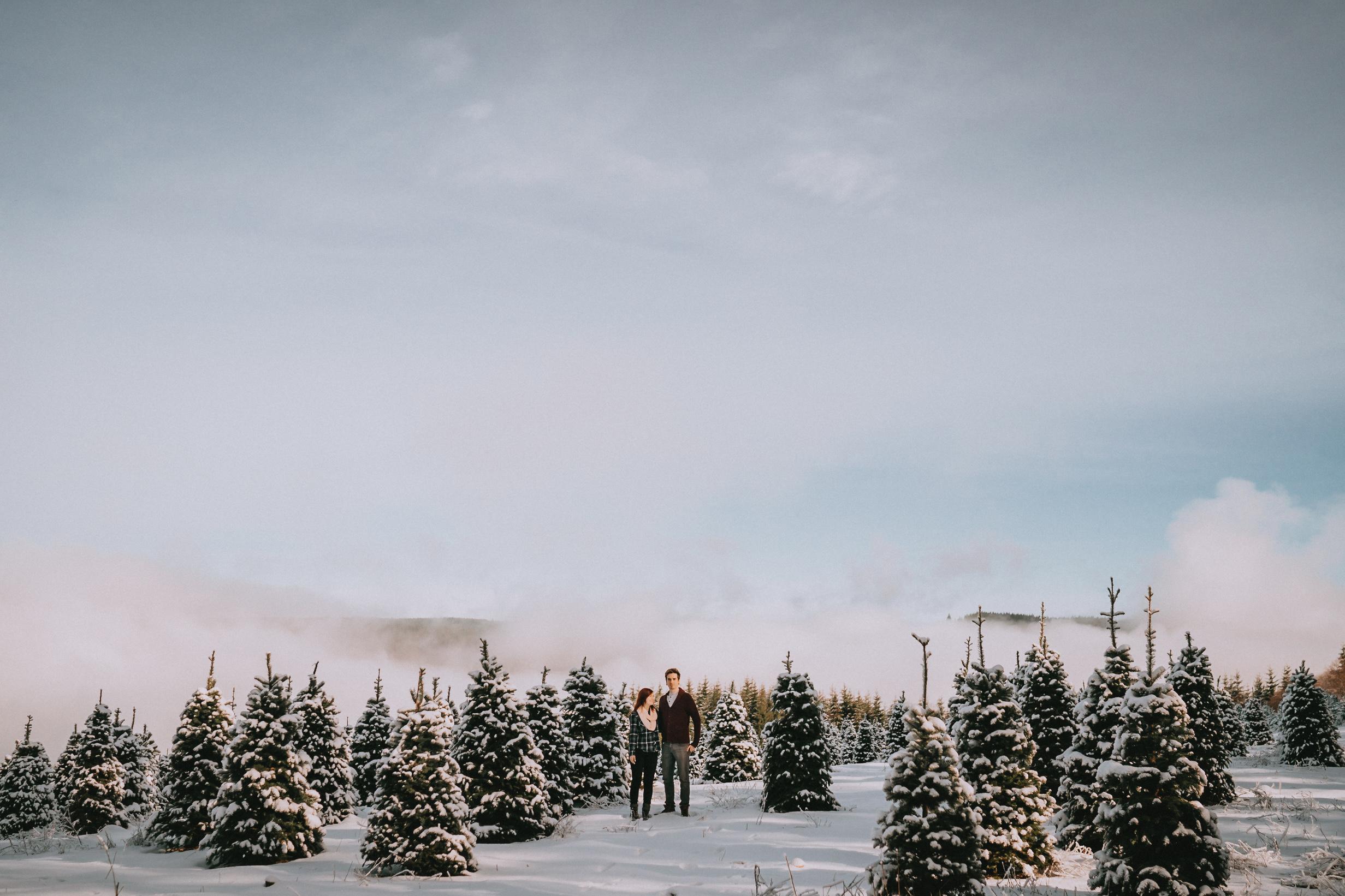 AbiquaFalls_Oregon_wedding_Engagement_photographer_alfred_tang-28.jpg