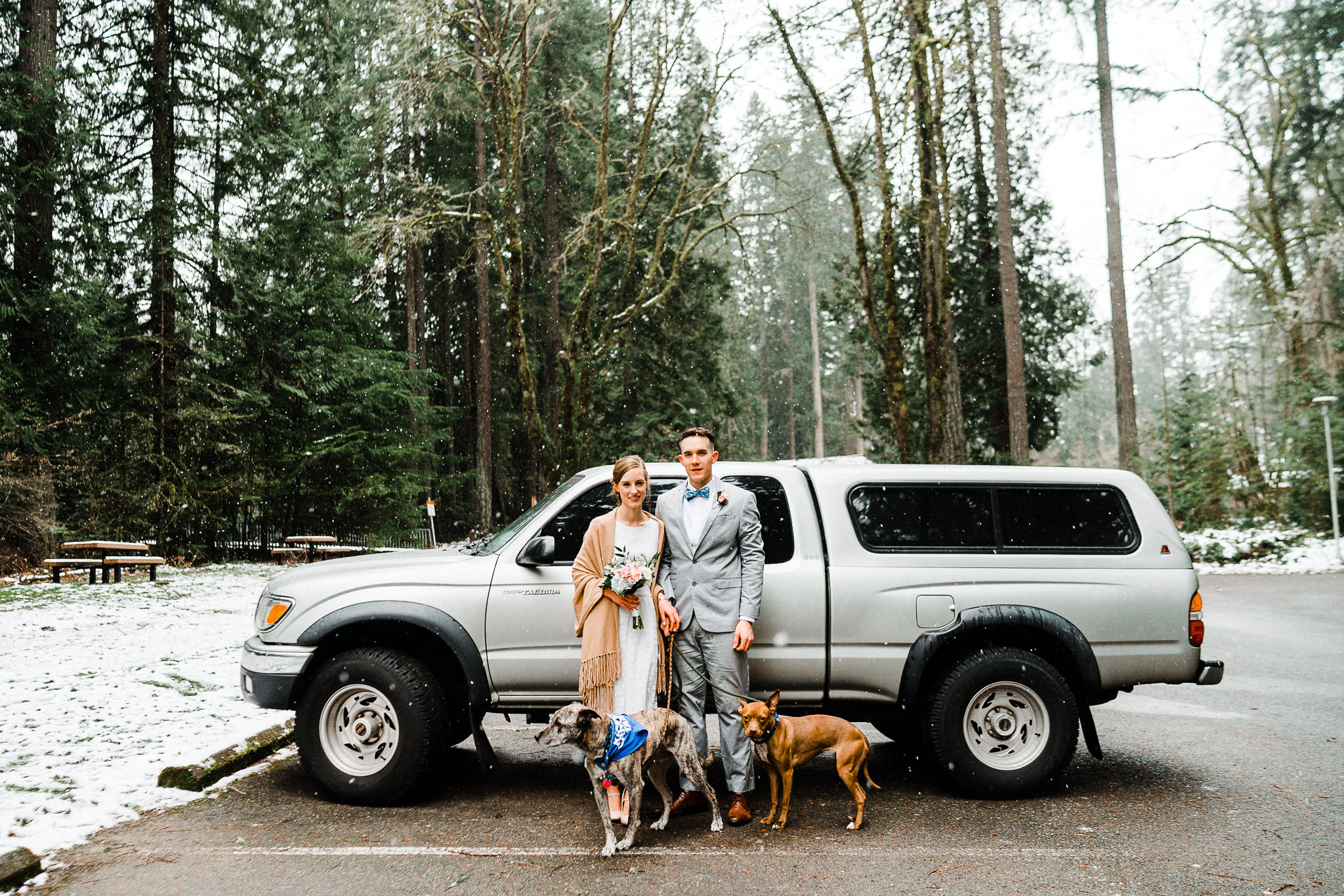 Toyota Tacoma Wedding dogs pitbull