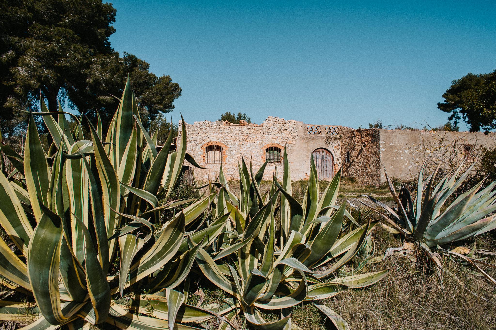 Barcelona-destination-photographer-alfred-tang-94.jpg
