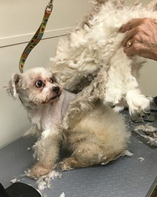 He wanted change, so we gave it to him!